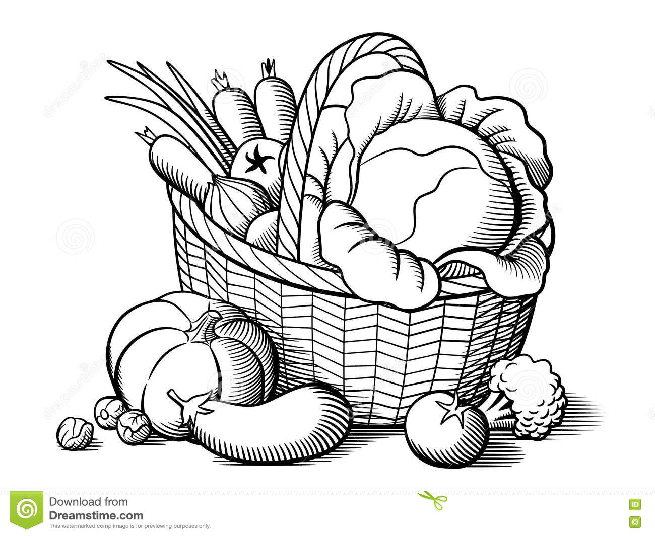 Basket With Vegetables Stock Vector Illustration Of Life