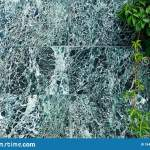 A Beautiful Dark Green Marble Wall With White Veins And Climbing Wild Grapes Material For Finishing And Construction Stock Image Image Of Green Cladding 184252475