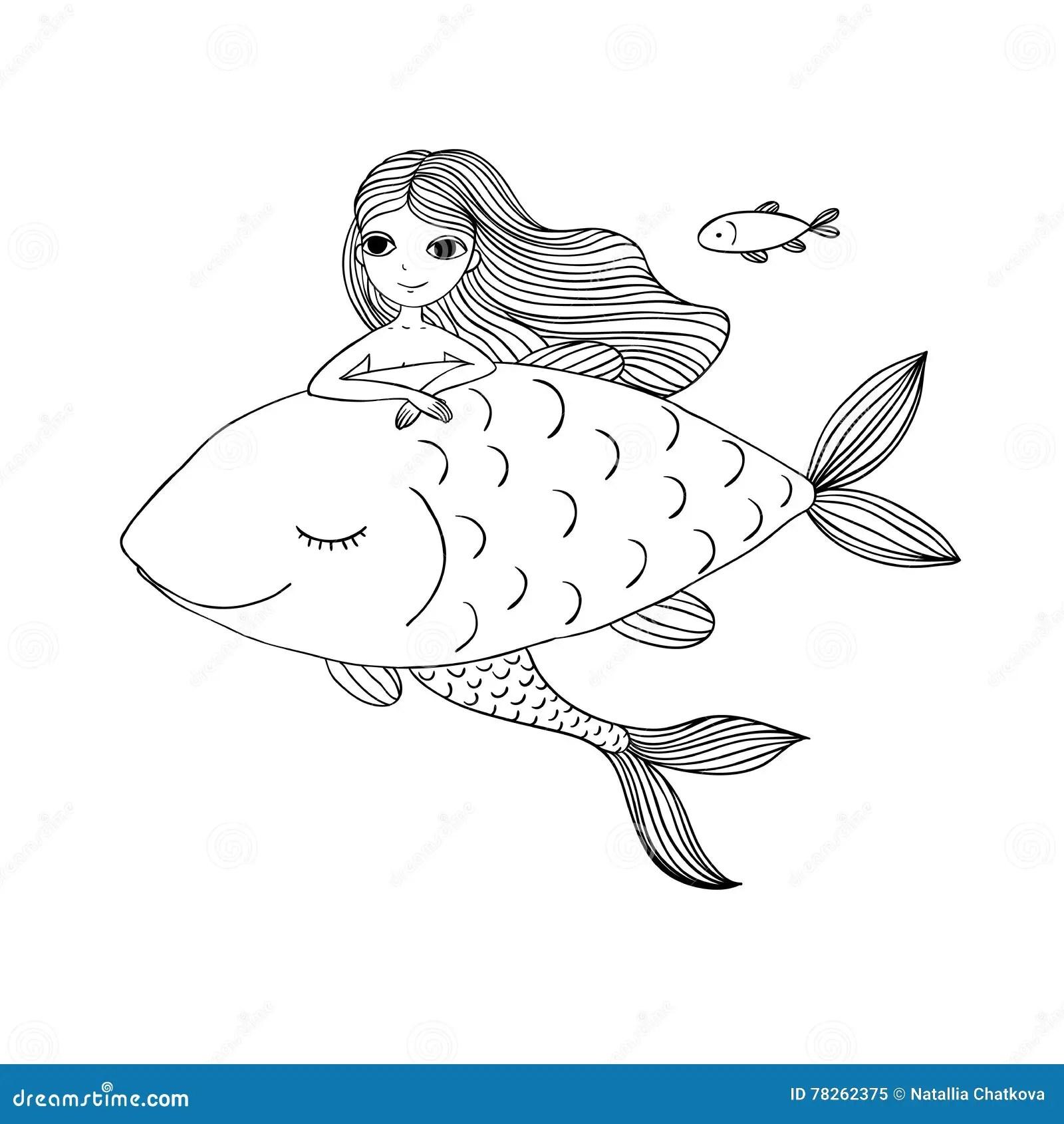 Beautiful Fish Royalty Free Stock Image
