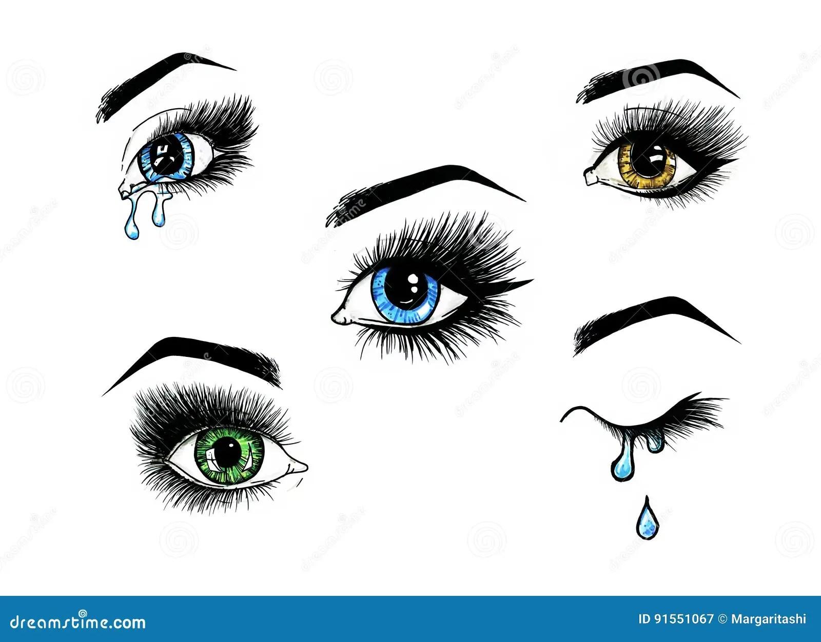 Beautiful Open Female Eyes Set With Long Eyelashes Is On A