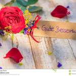 Get Well Soon Rose Photos Free Royalty Free Stock Photos From Dreamstime
