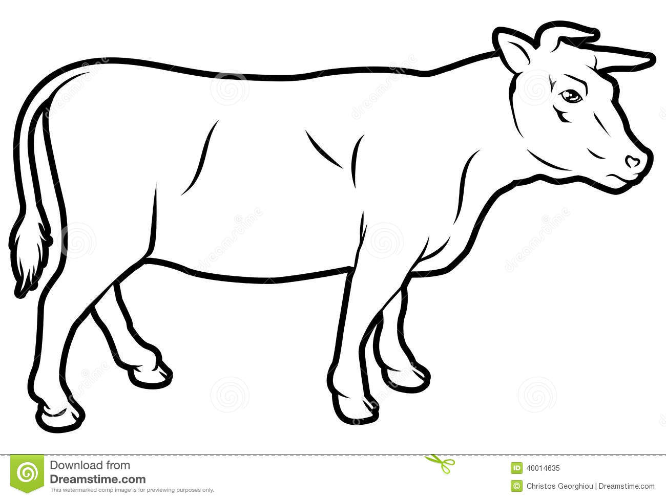 Beef Cow Illustration Stock Vector