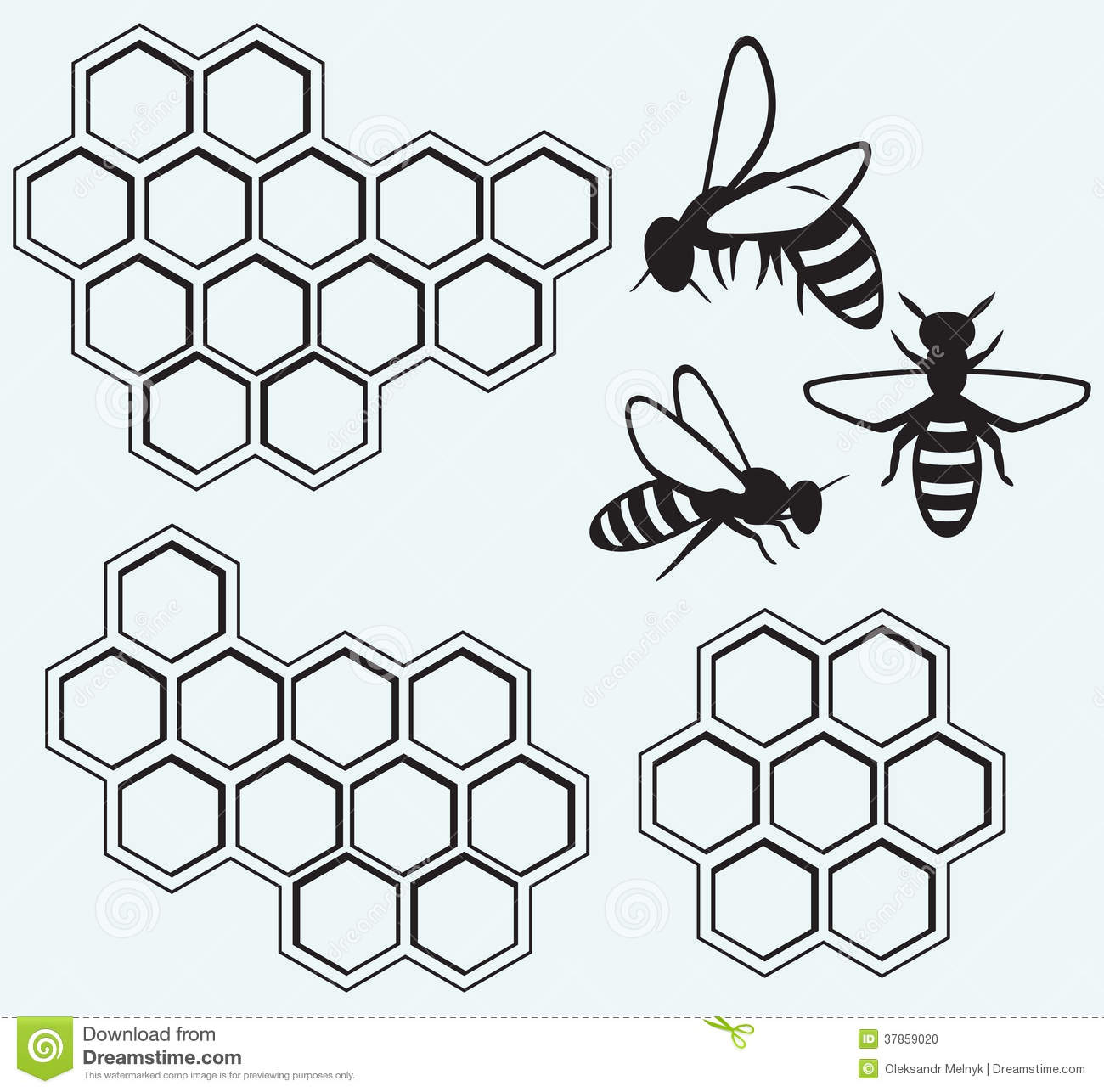 Bees On Honey Cells Stock Photo