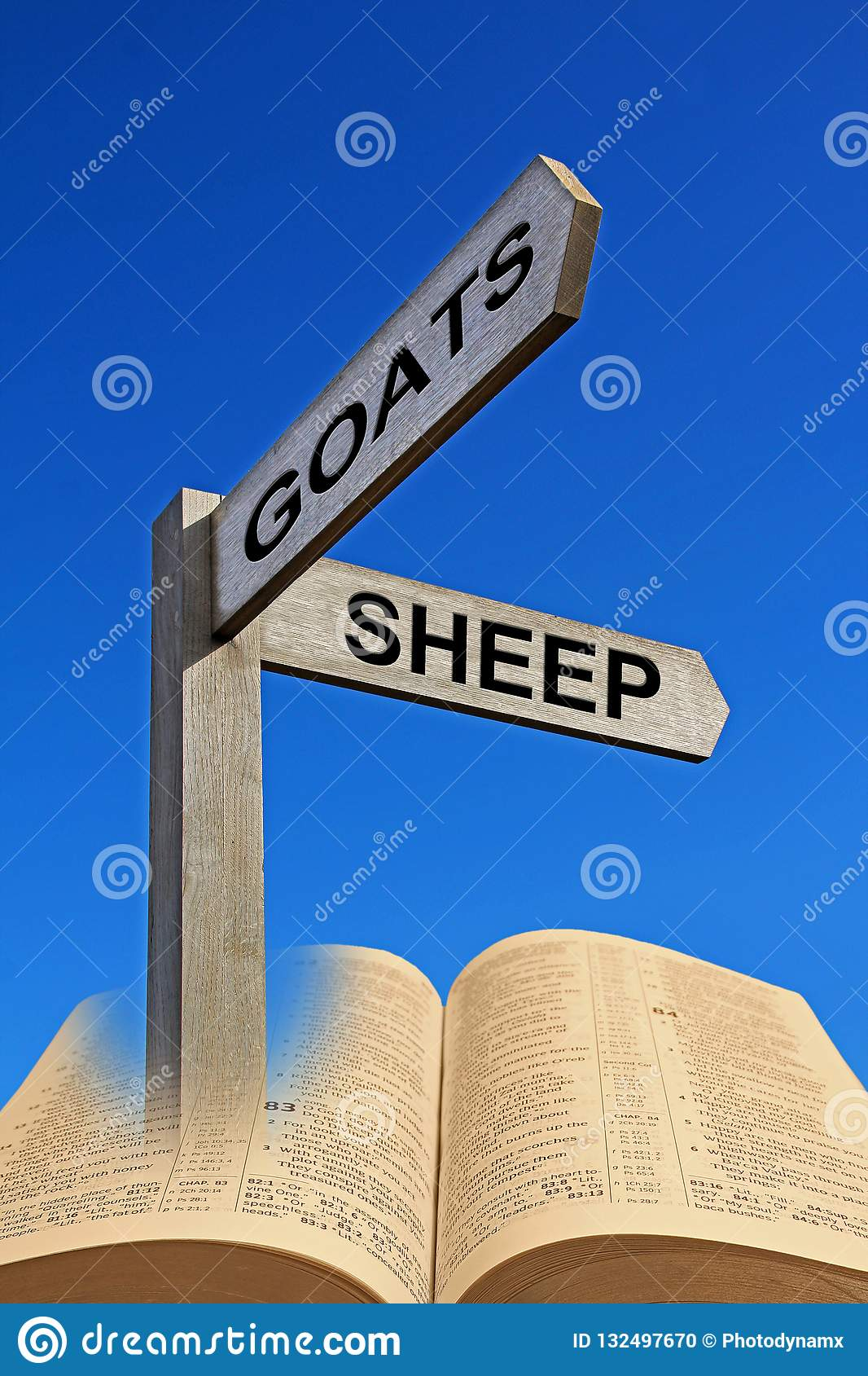 Bible Parable Of The Sheep And The Goats Stock Photo