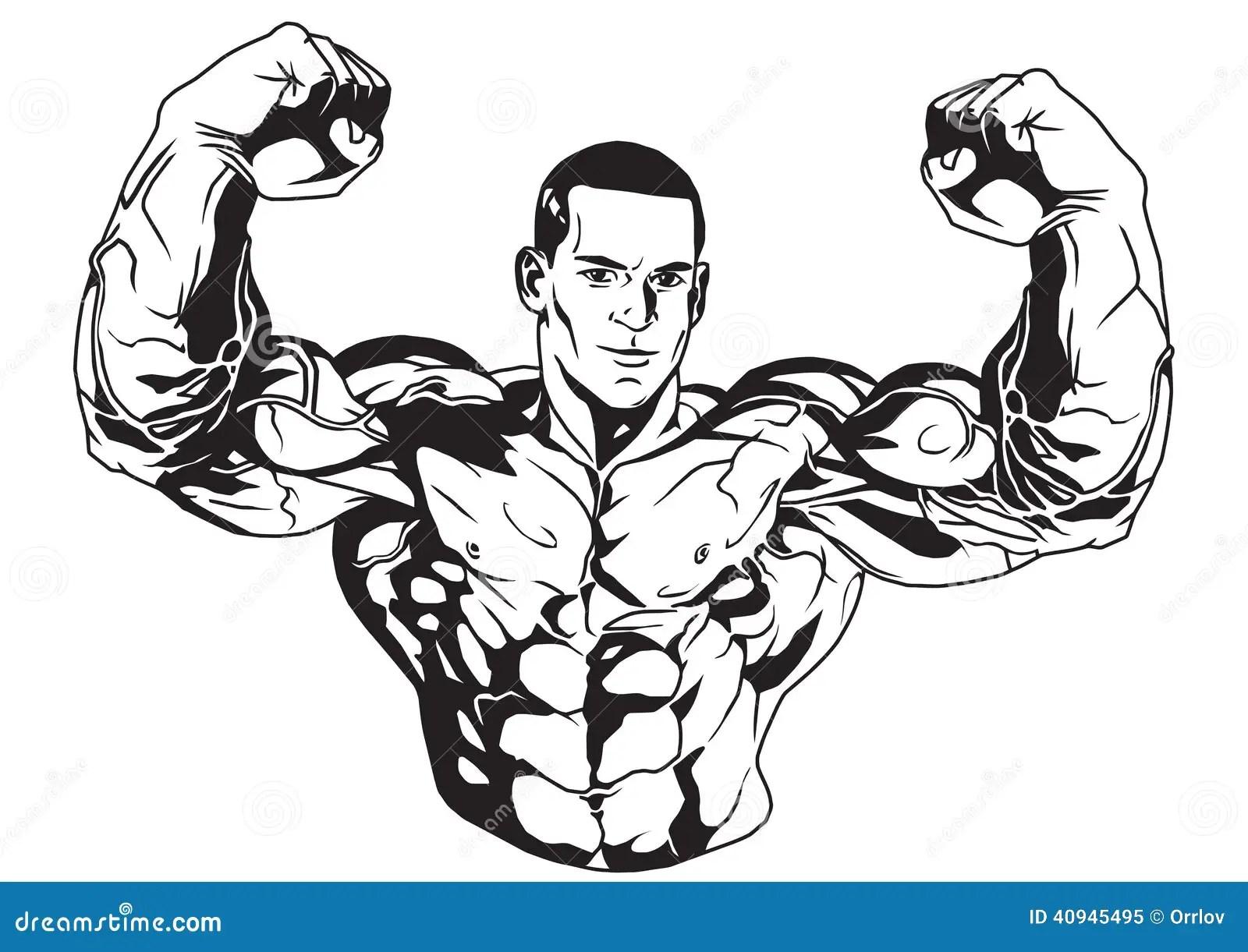 Biceps Stock Vector Illustration Of Illustration