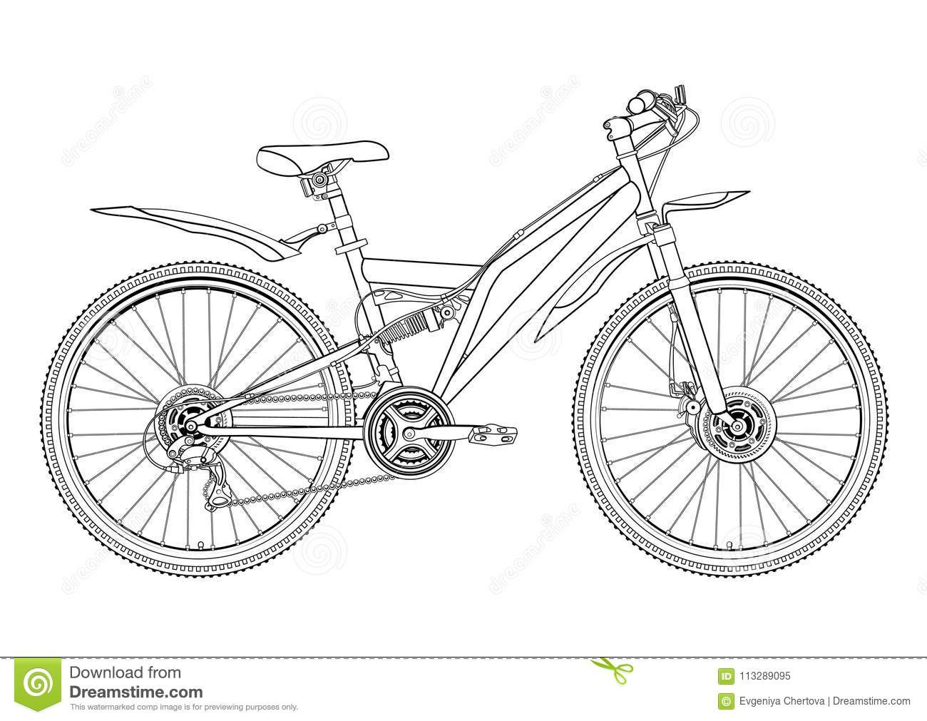 Bicycle Vector Contour Drawing Monochrome Black And