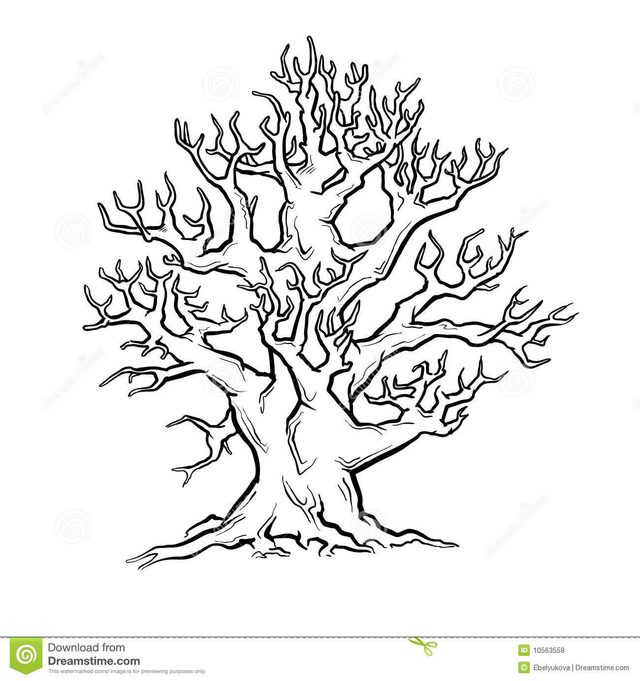 Big Old Tree Stock Vector Image Of Object Single Tree