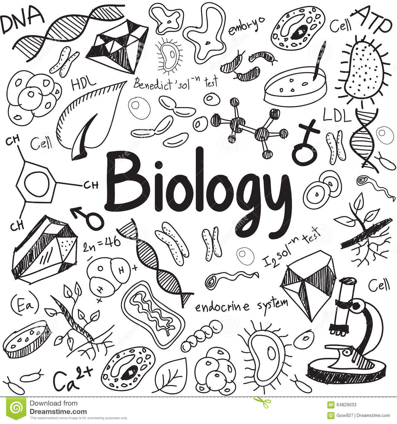 Biology Science Theory Doodle Handwriting And Tool Model Icon In Stock Vector