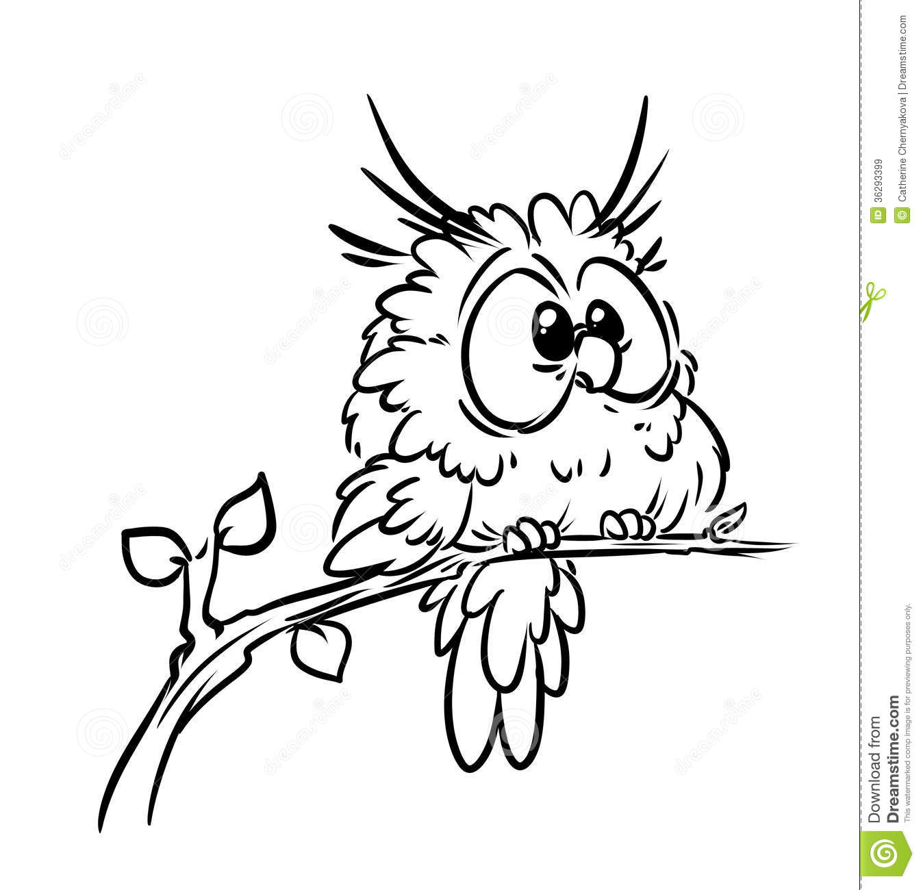 Bird Owl Coloring Pages Royalty Free Stock Images