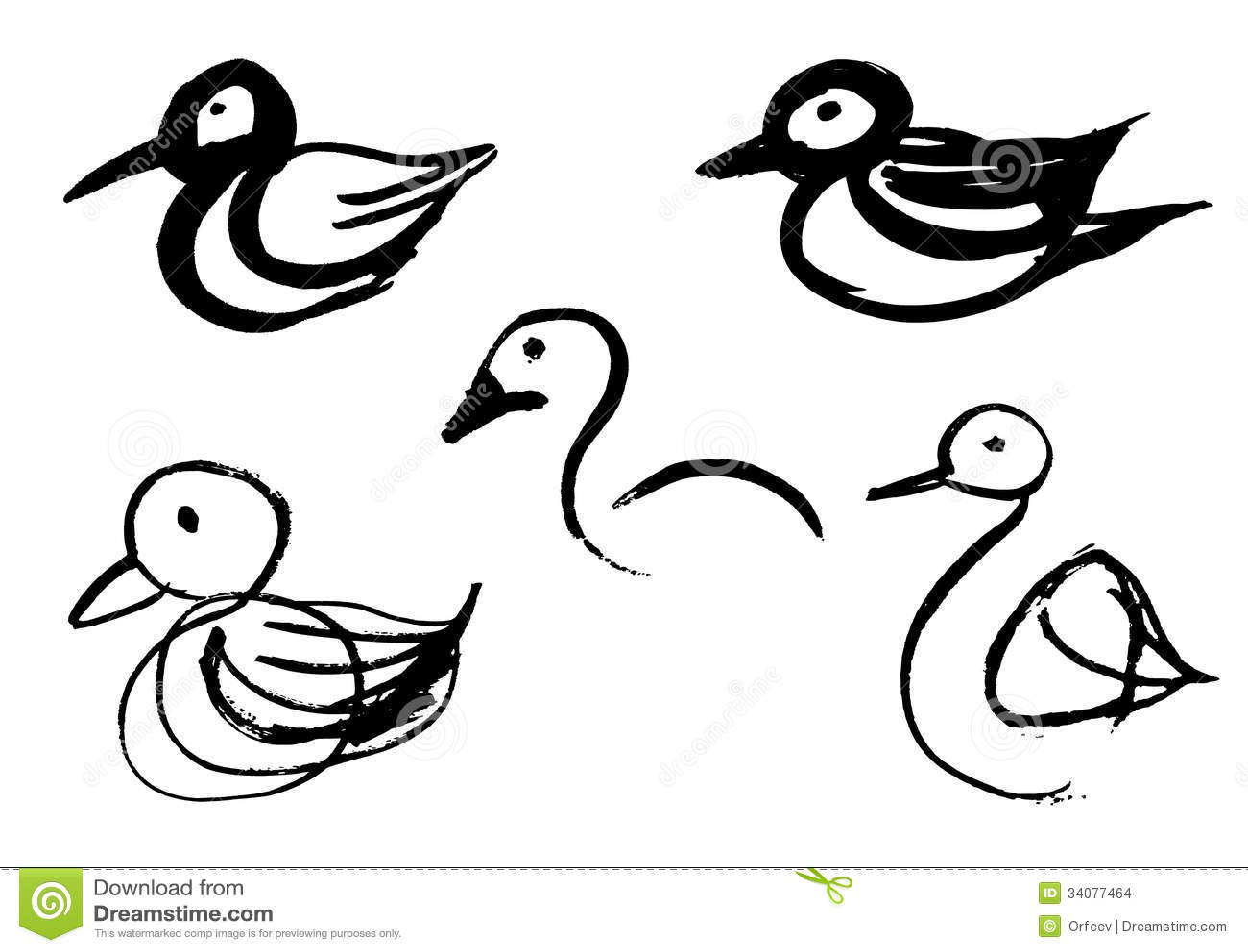 Bird Sketches Stock Vector Illustration Of Animal Peace