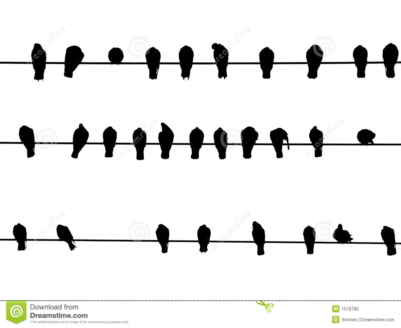Birds On A Wire Stock Photo Image Of Sars Wire
