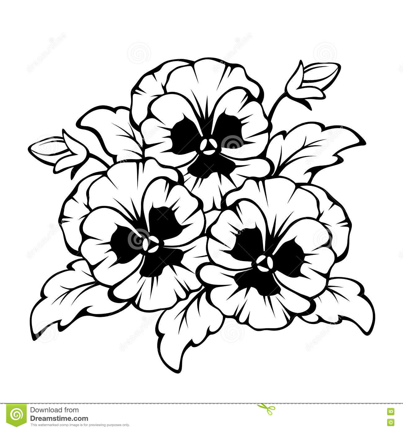 Black Contour Of Pansy Flowers Vector Illustration Stock