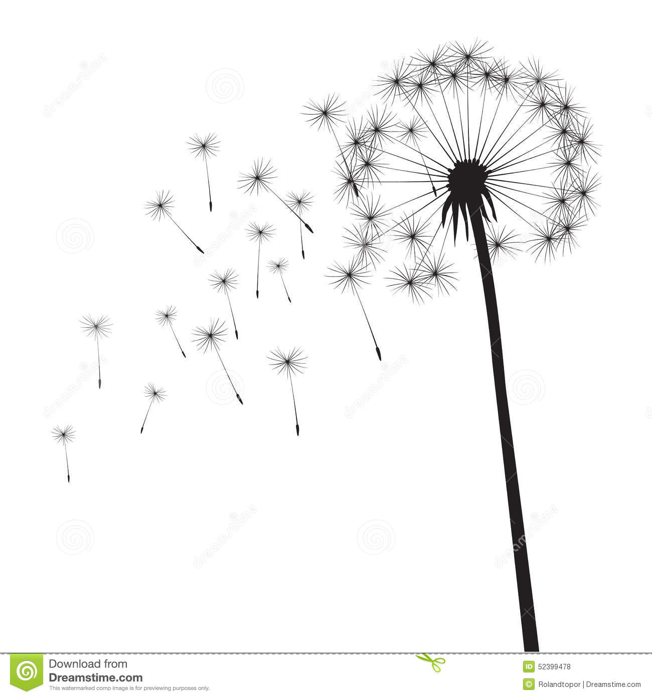 Black Dandelion Stock Illustration Illustration Of