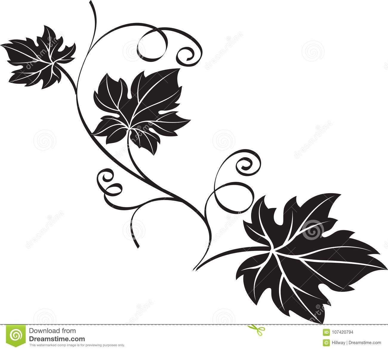 Black Gbranch With Leaves On White Background Stock