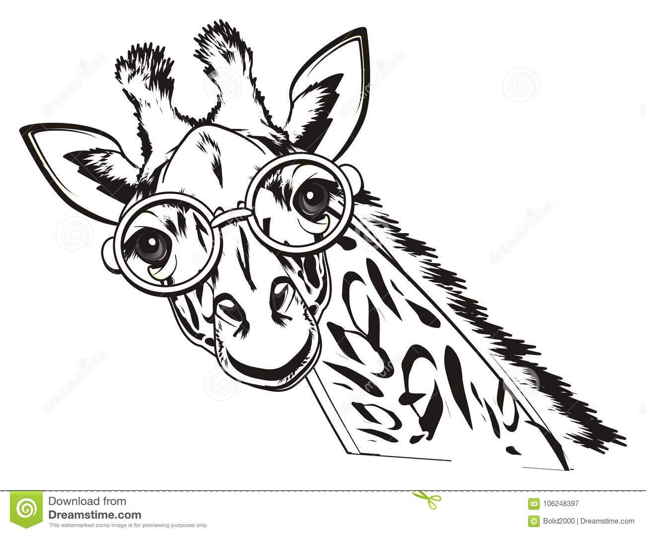 Not Colored Giraffe In Glasses Stock Illustration