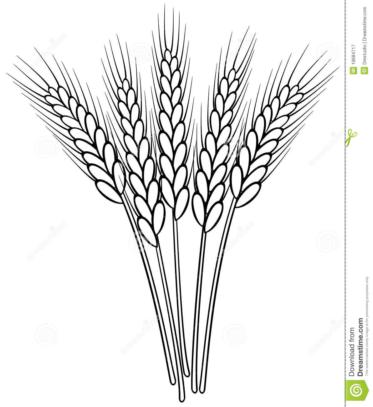 Black And White Wheat Ears Stock Vector Illustration Of