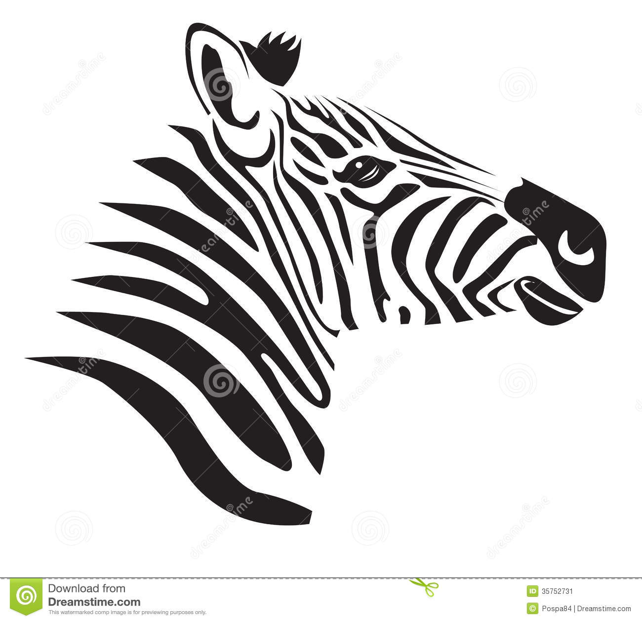 Black Zebra Stock Illustration Illustration Of Veld