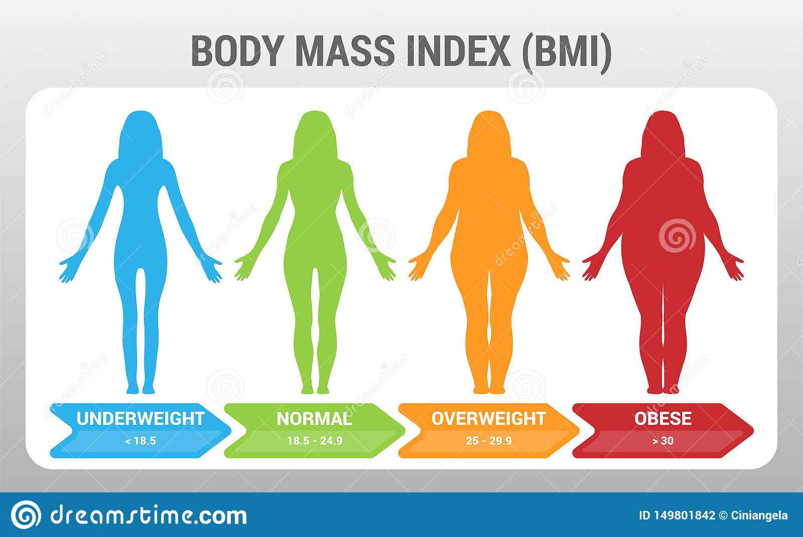 Bmi Body Mass Index Vector Illustration With Woman