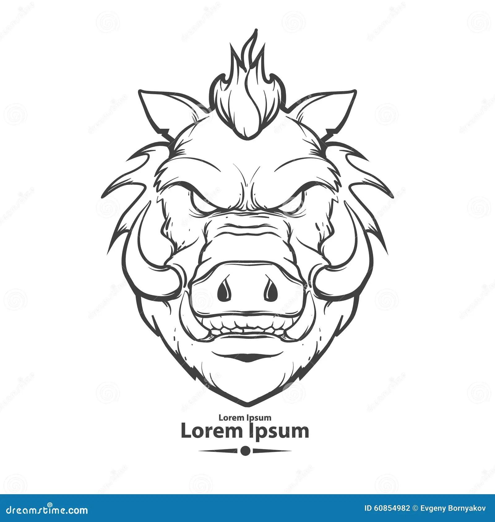 Boar Cartoons Illustrations Amp Vector Stock Images