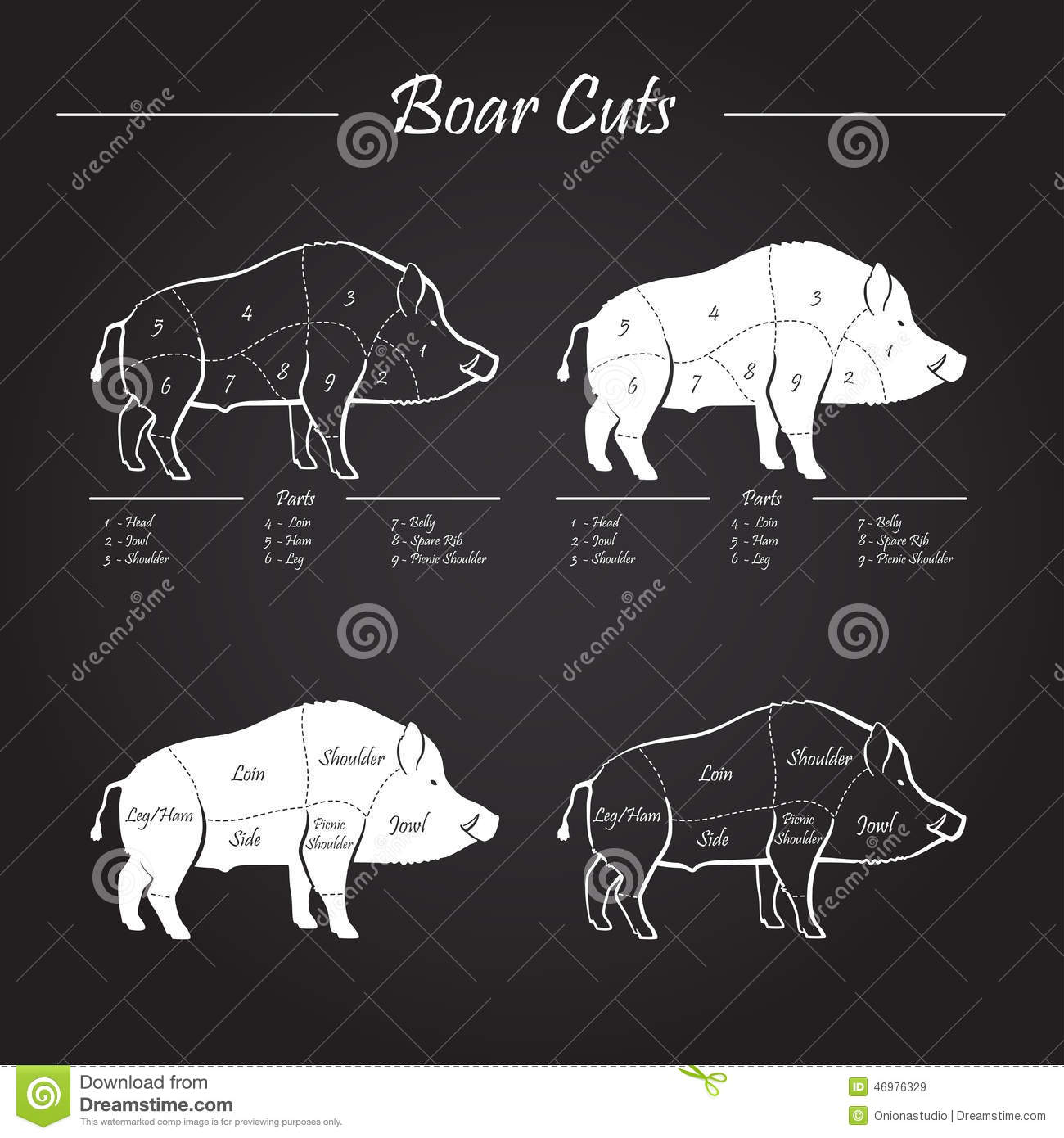 Cuts Of Meat From A Deer Venison Diagram
