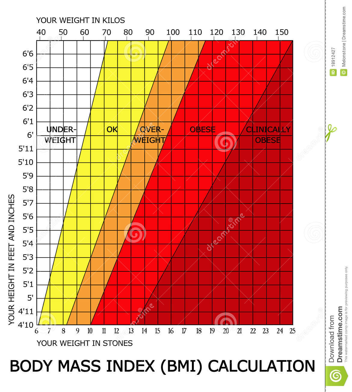 Body Mass Index Bmi Calculator Royalty Free Stock