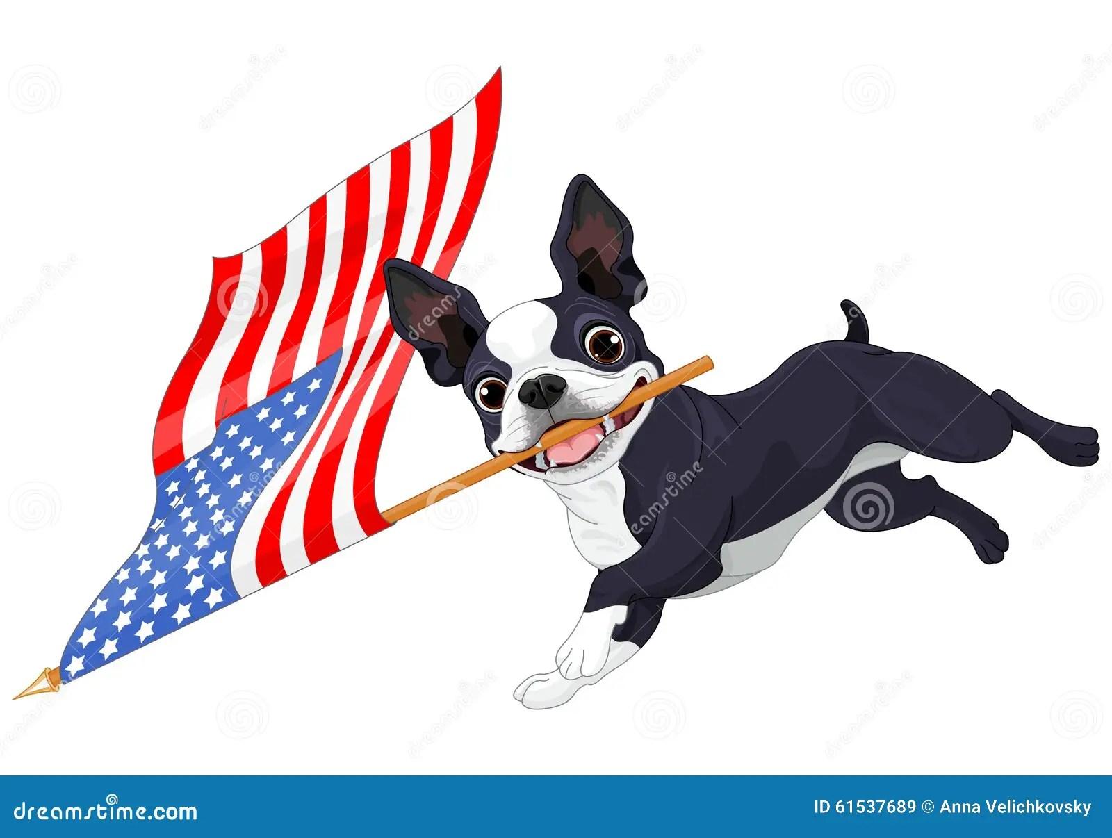 Funny Boston Terrier Art