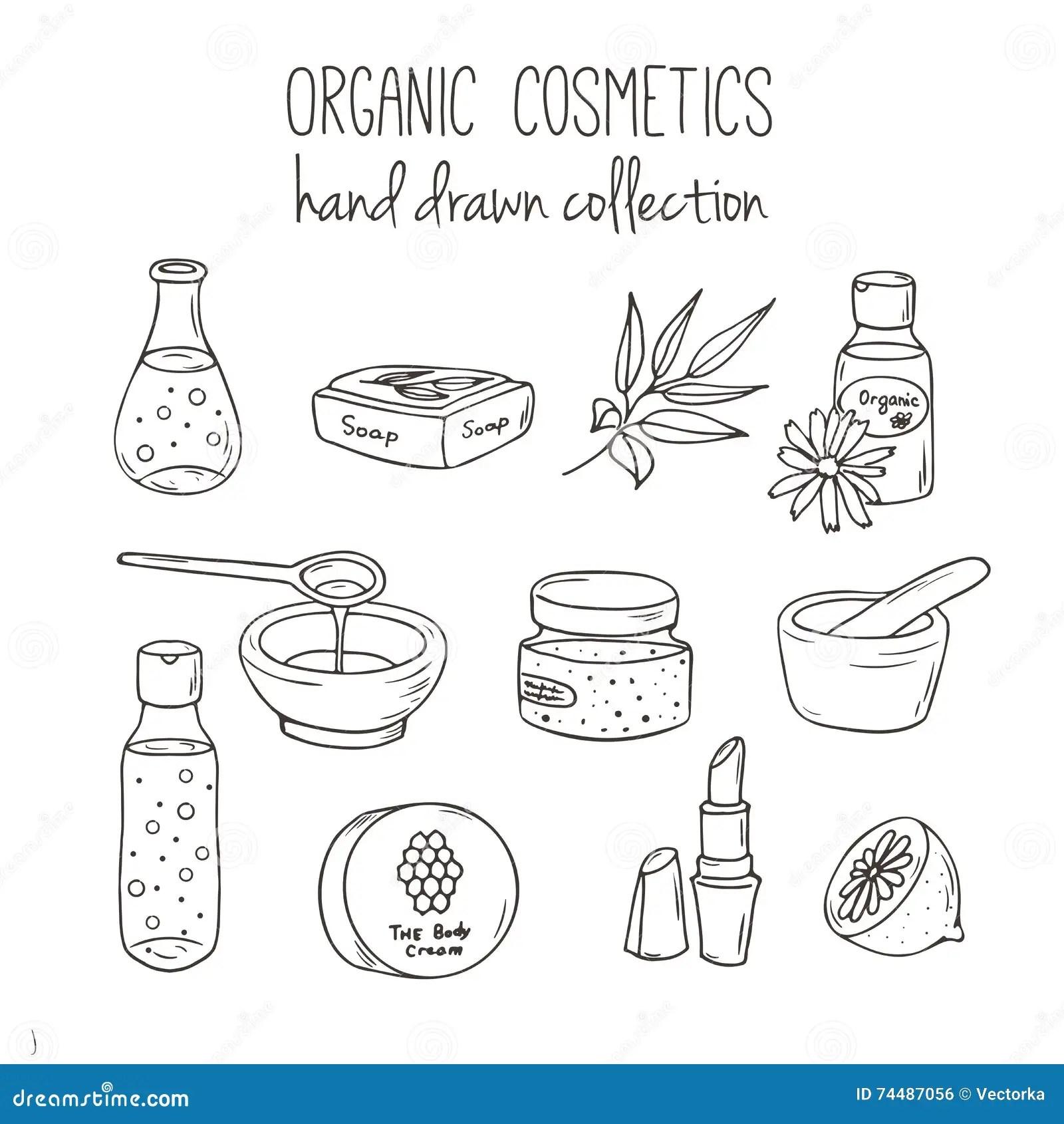 Bottiglie Del Cosmetico Di Vettore Illustrazione Organica