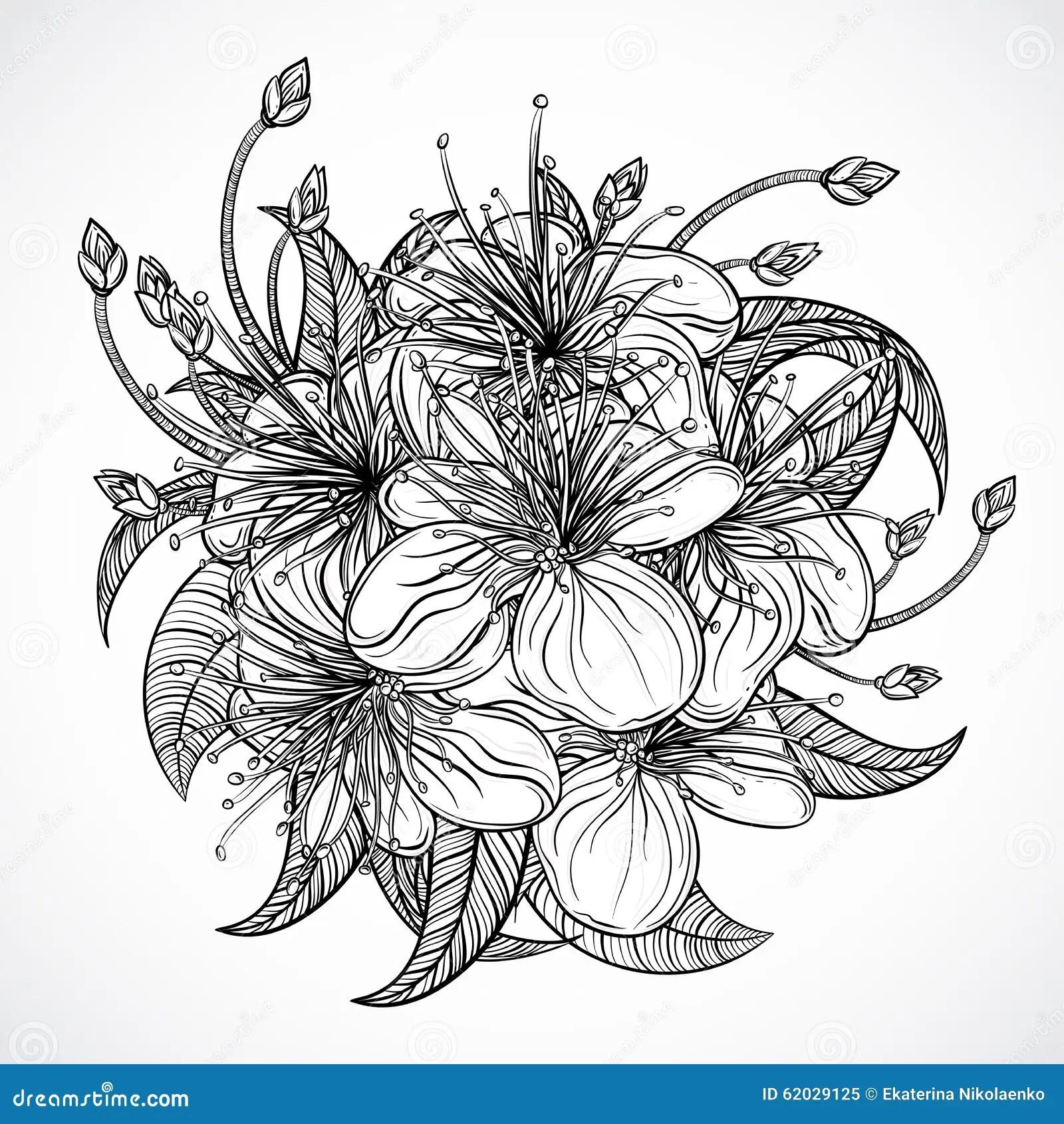 Bouquet Des Fleurs Exotiques Fleurs Et Feuilles Tropicales