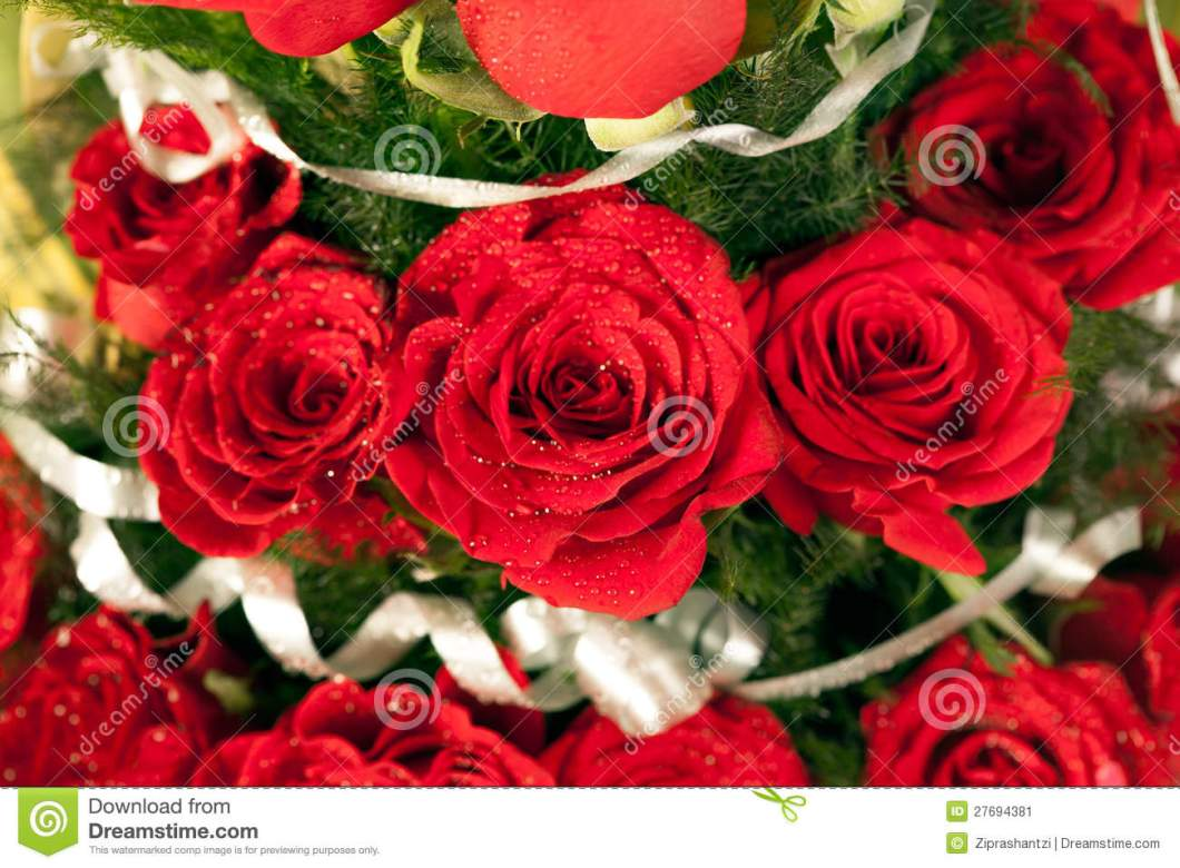 Pic of flowers red roses wallpapergenk bouquet of red rose flowers stock image 27694381 izmirmasajfo Choice Image