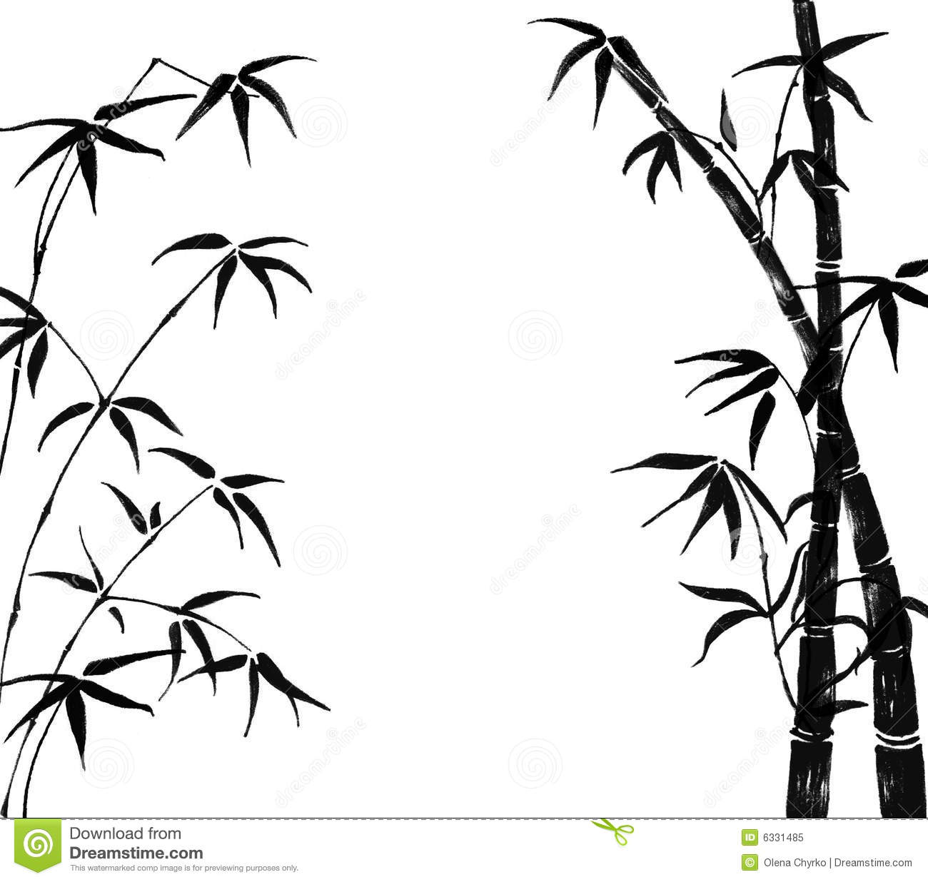 Branches Of A Bamboo On A White Background Stock
