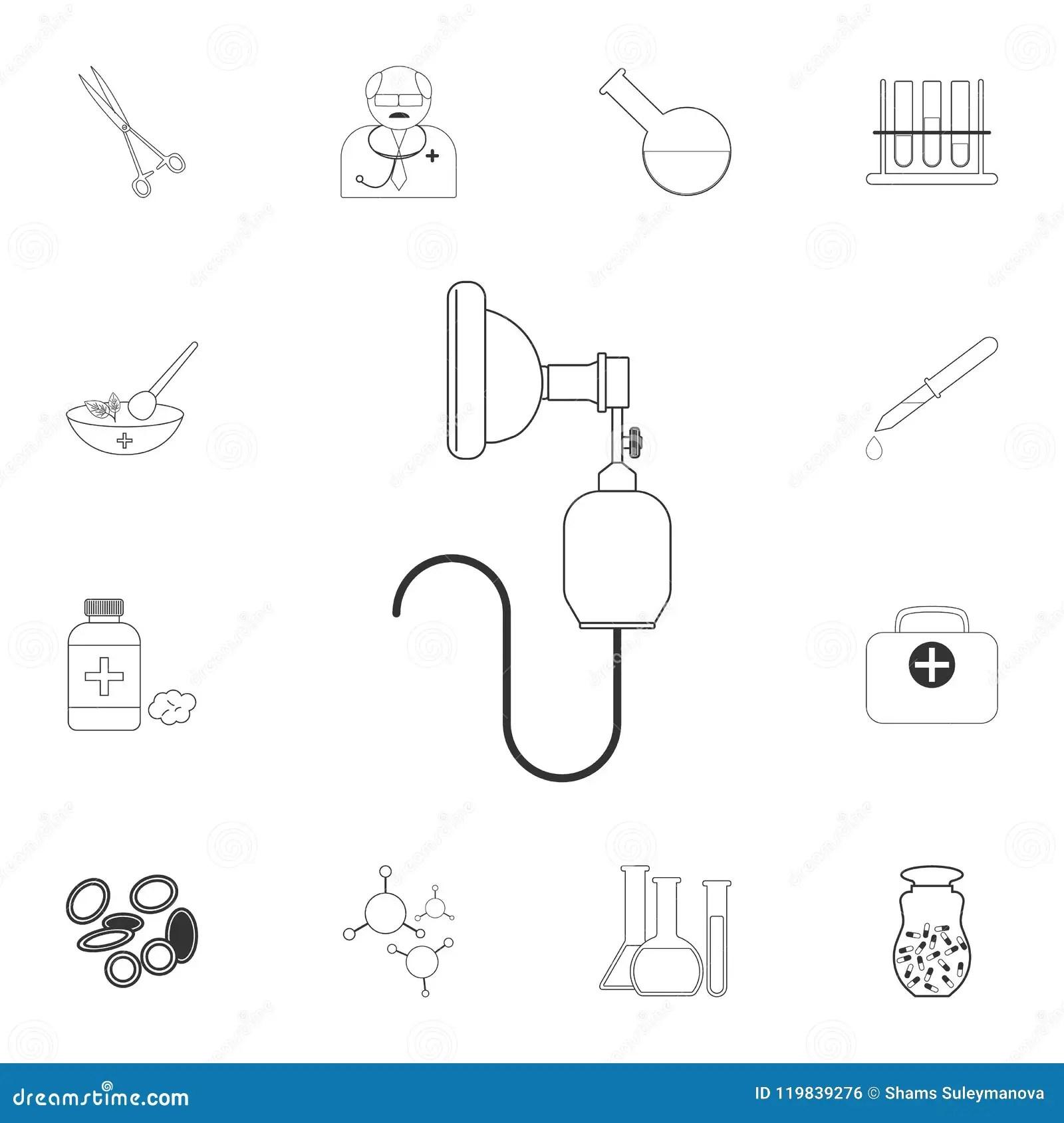 Human Diaphragm Anatomy Royalty Free Stock Photo