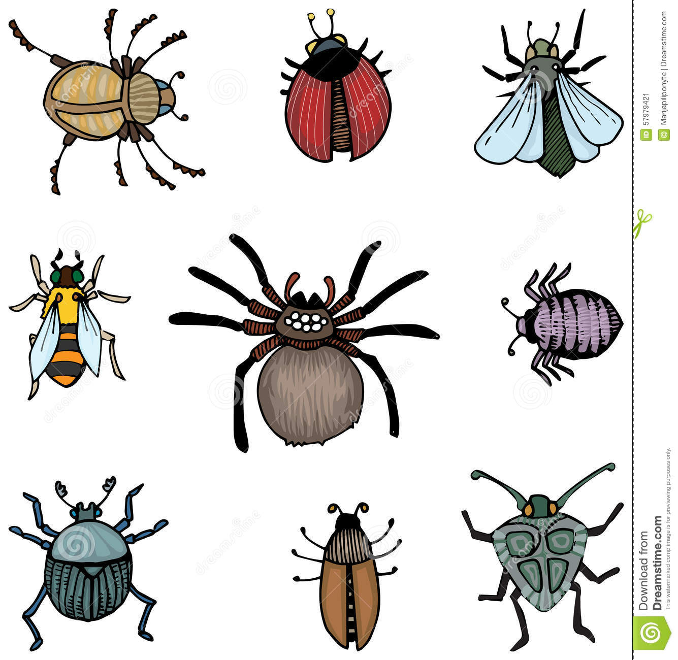Bugs And Insects Stock Vector