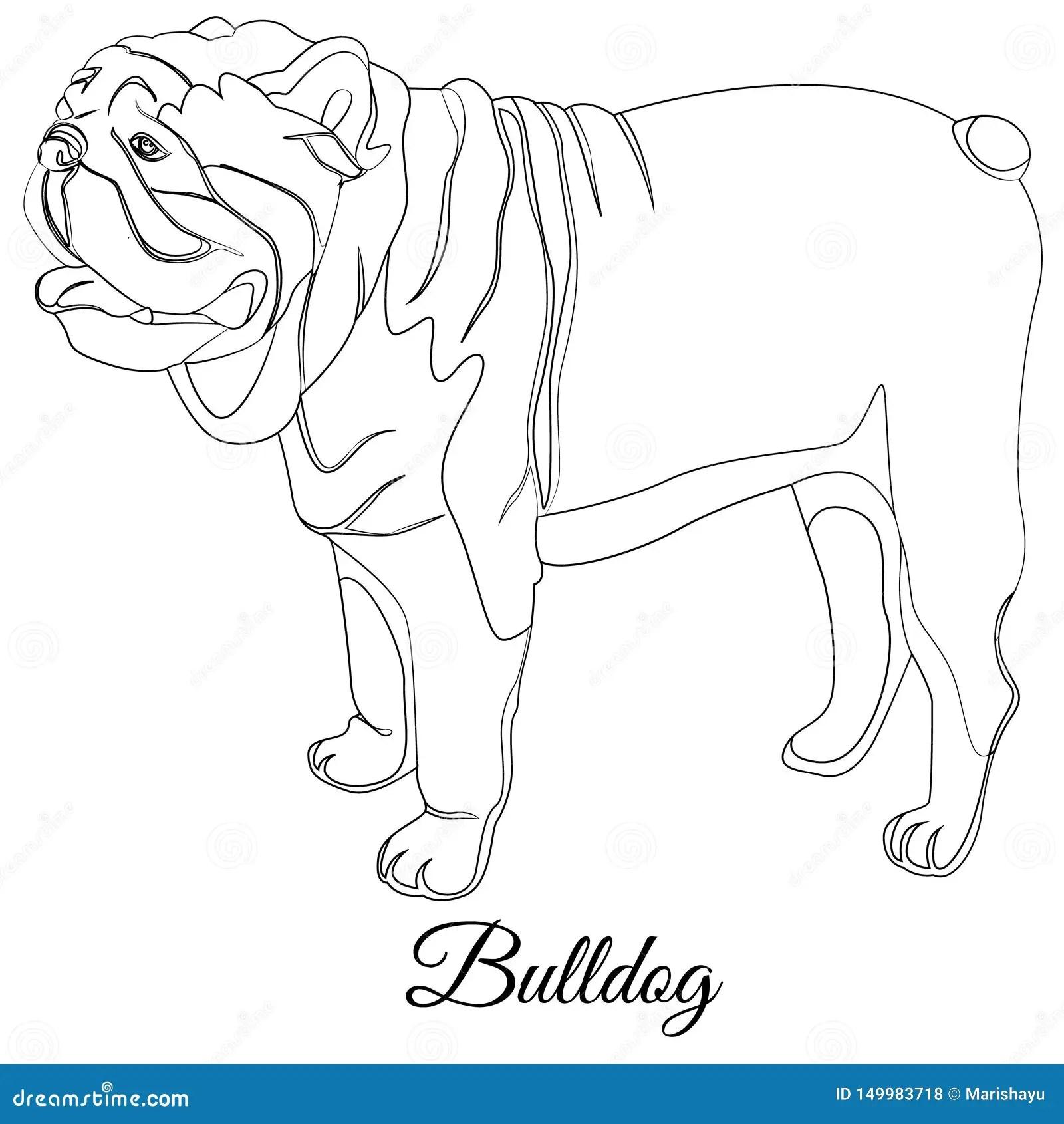 Bulldog Cartoon Dog Coloring Outline Stock Illustration Illustration Of Outline Coloring 149983718