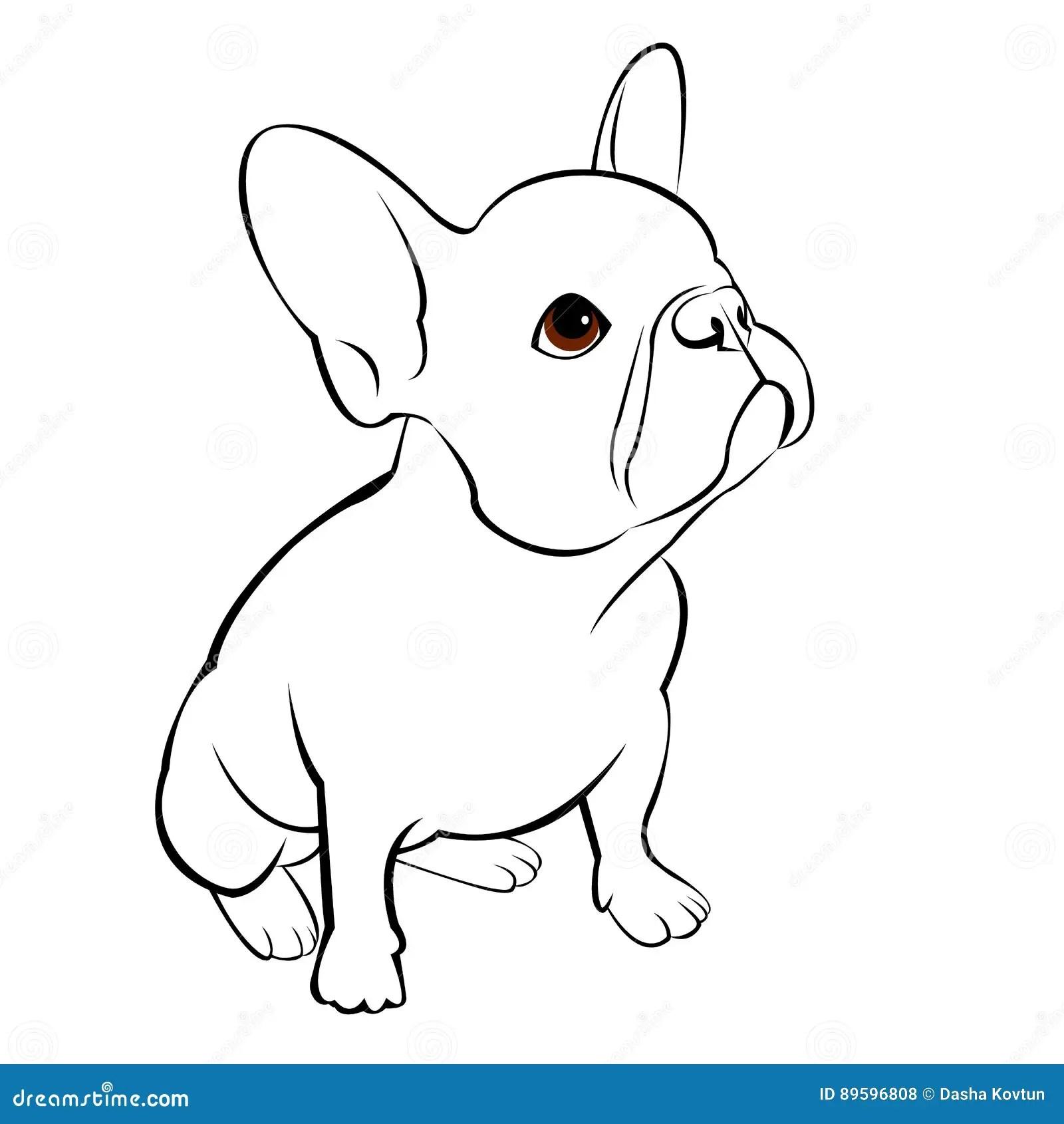Animal A Dog
