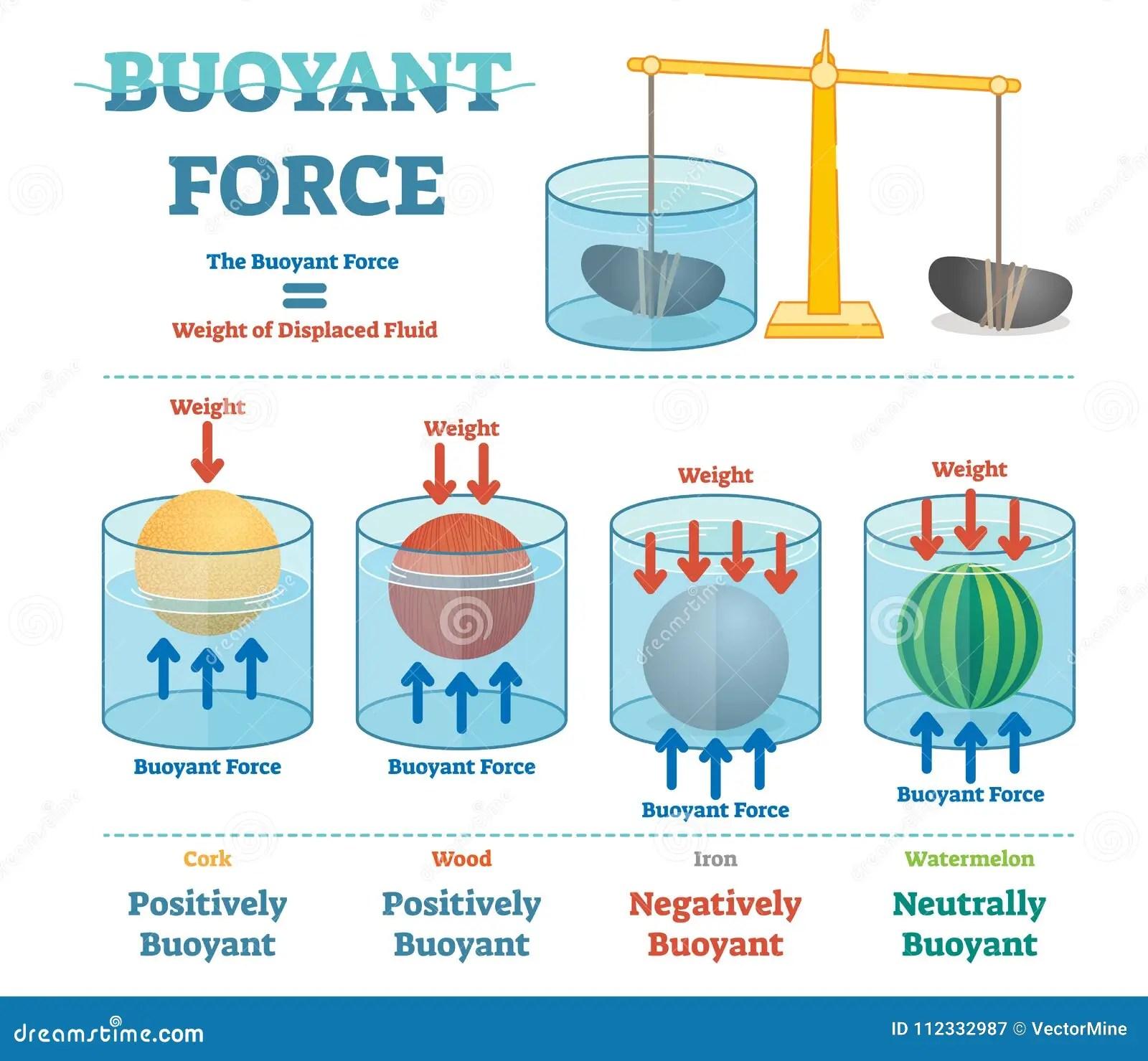 Buoyant Force Illustrative Educational Physics Diagram
