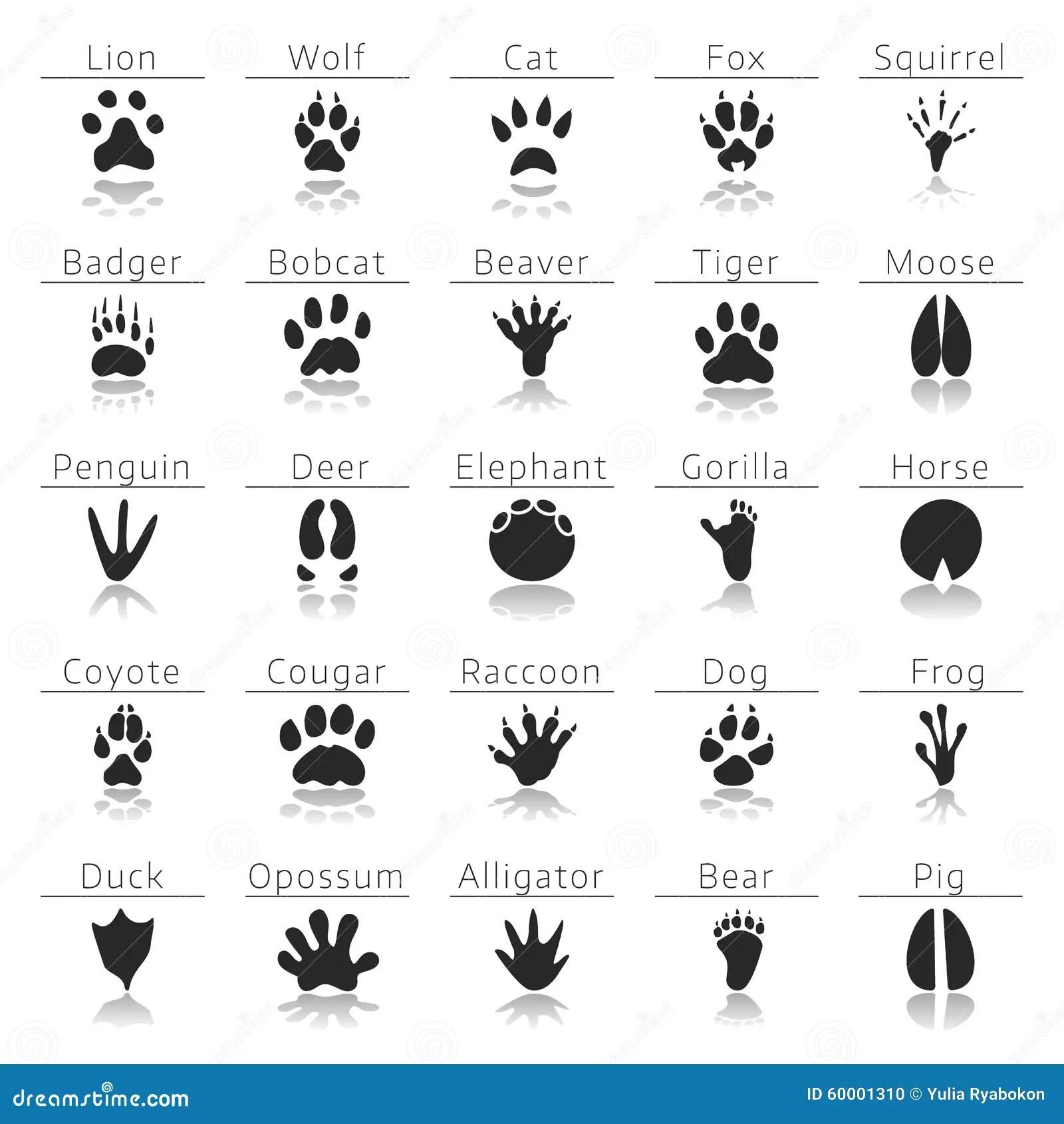 Copias Animais Da Trilha Ajustadas Ilustracao Do Vetor