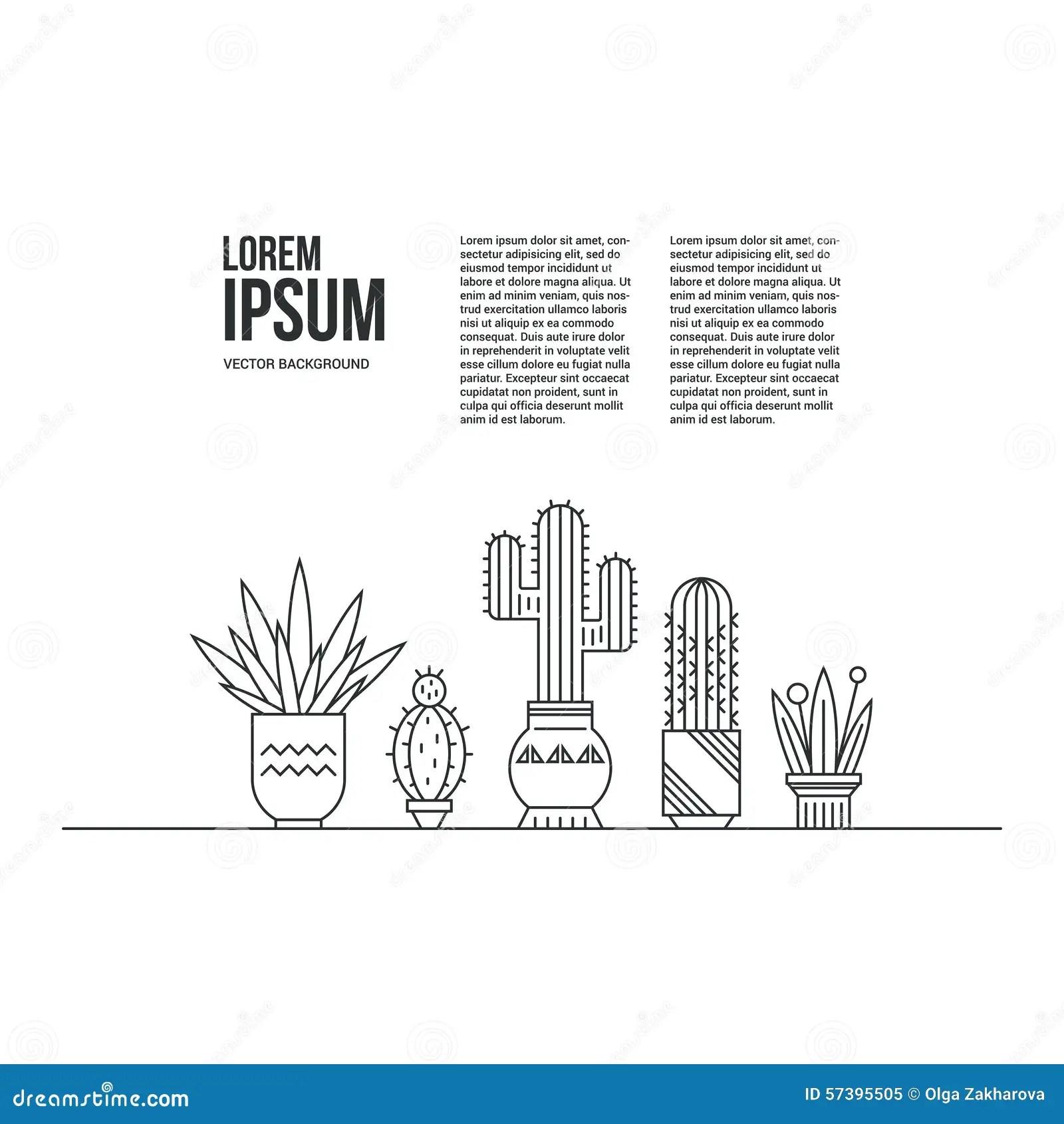 Cactus Stock Vector Image Of Garden Herbal Houseplant