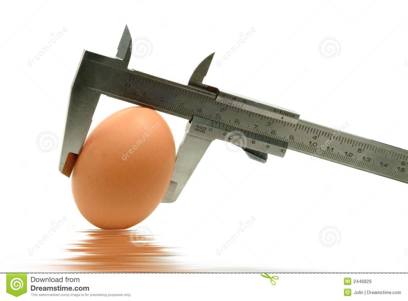 Caliper Measuring The Egg Royalty Free Stock Images