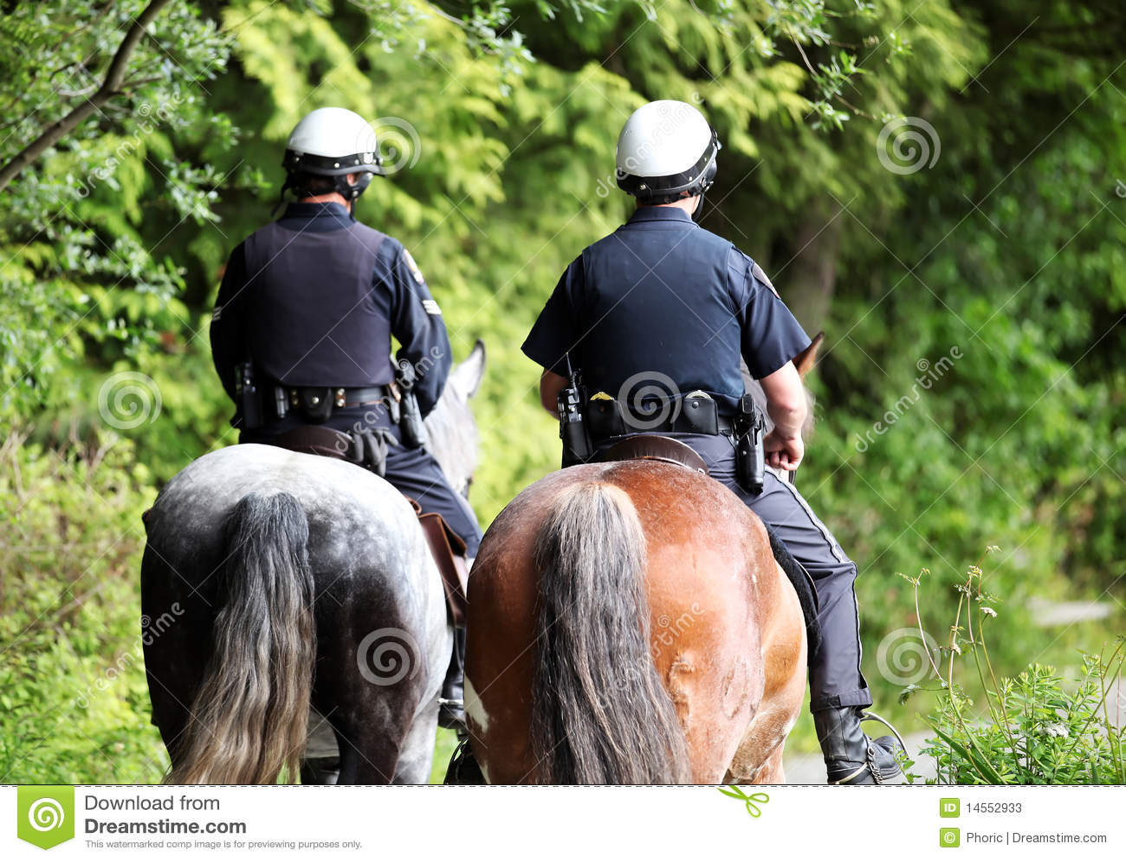 Canadian Mounted Police Stock Image Image Of Mounted