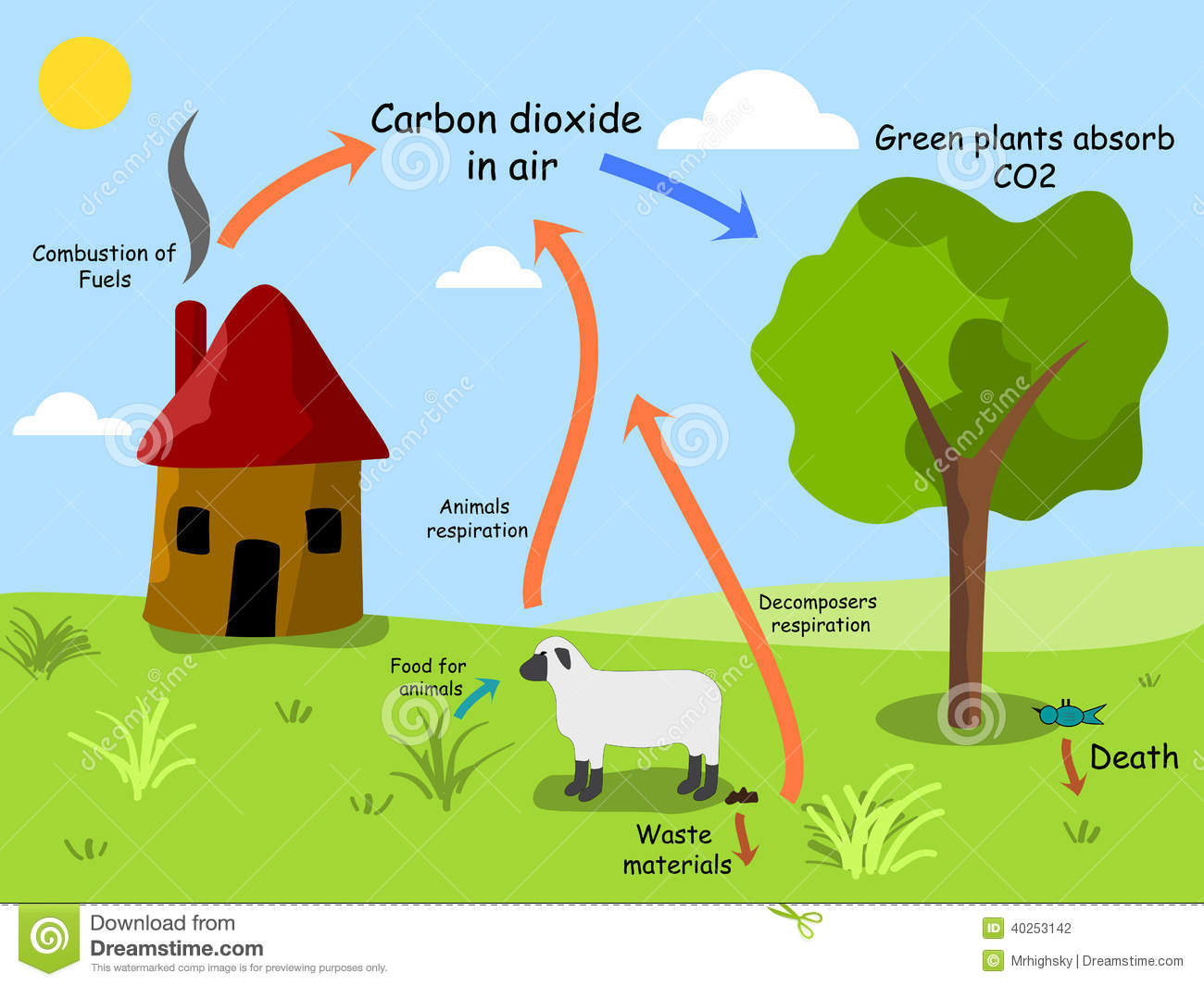 Stock Photography Carbon Dioxide Cycle Image