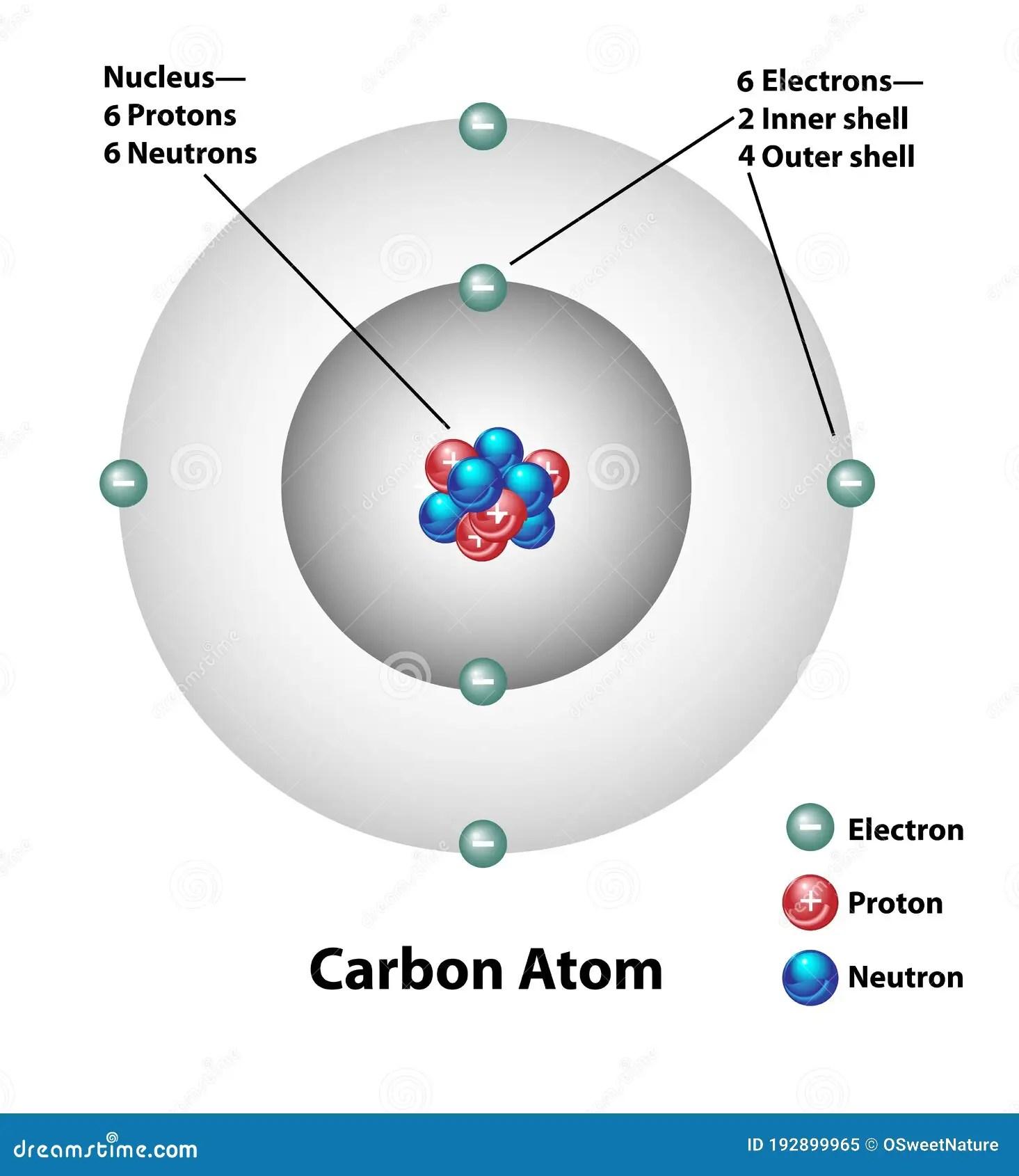 Carbon Atom Molecular Structure Labels Stock Vector