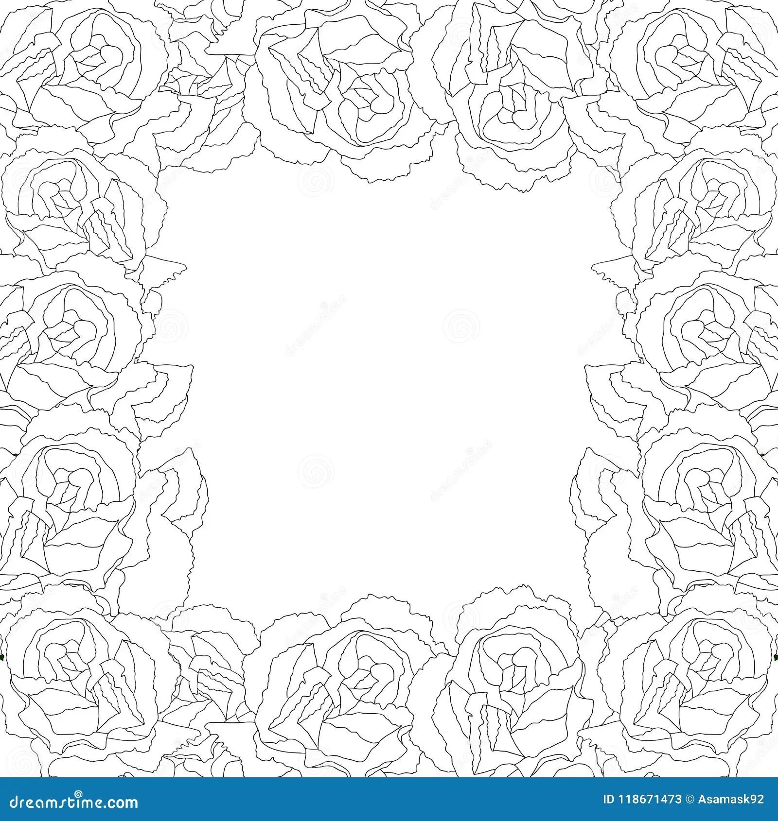 carnation flower outline border dianthus caryophyllus