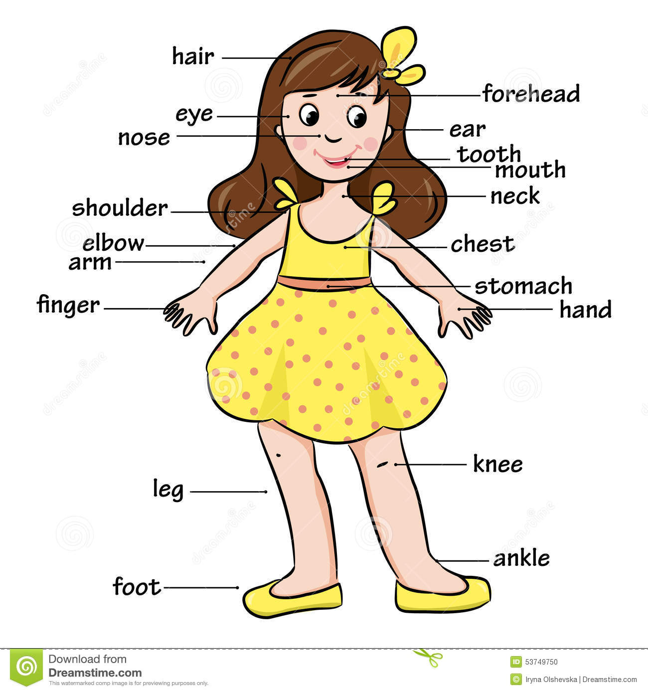 Cartoon Child Vocabulary Of Body Parts Stock Vector