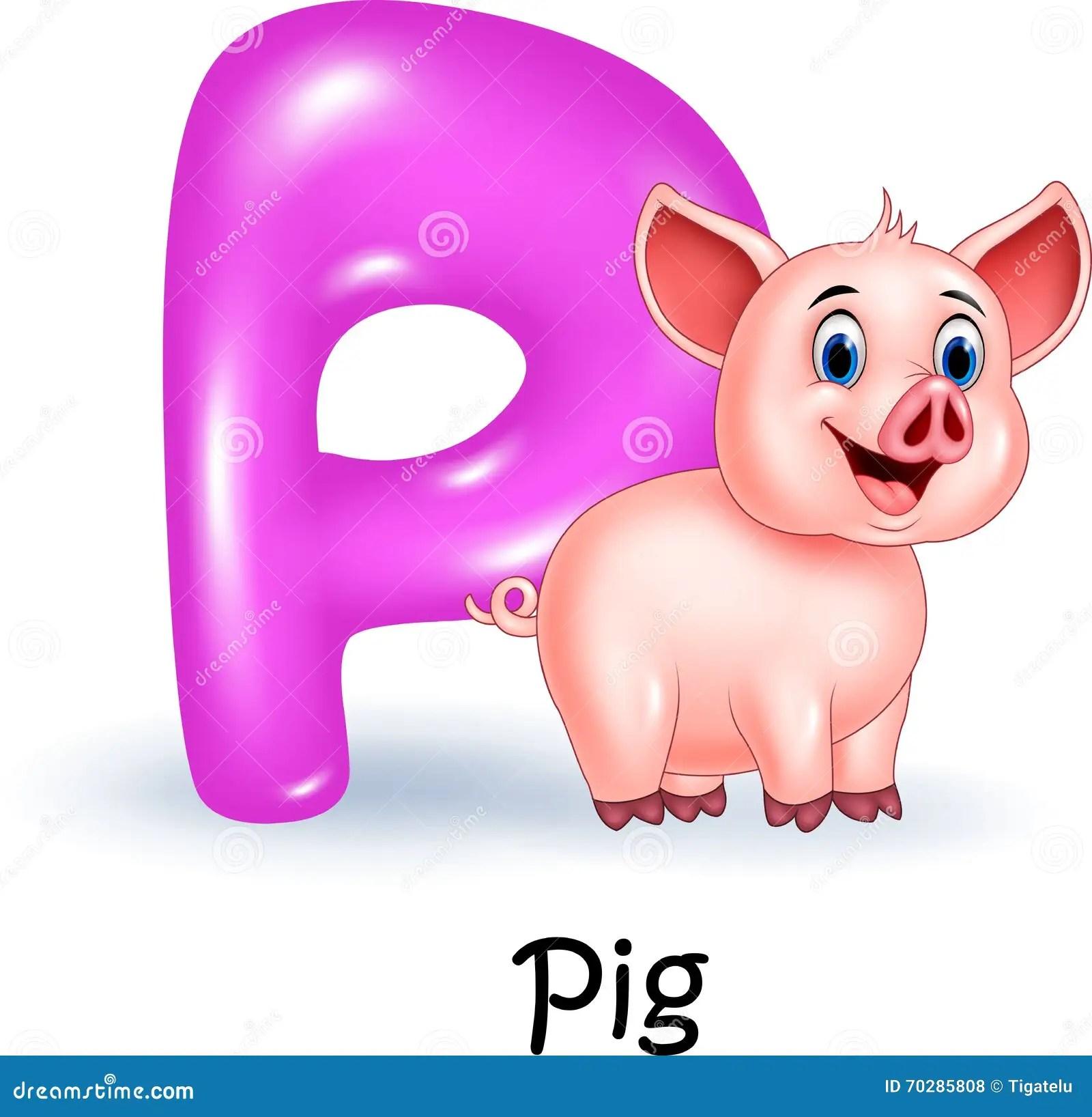 Cartoon Illustration P Of Letter For Pig Stock Vector
