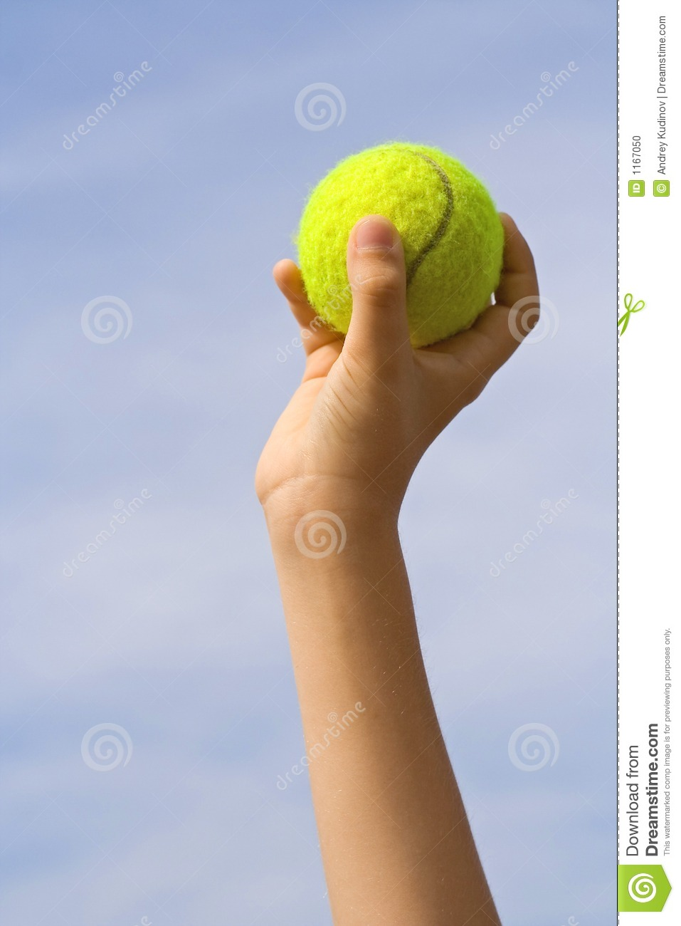 Catch The Ball Stock Photo Image 1167050