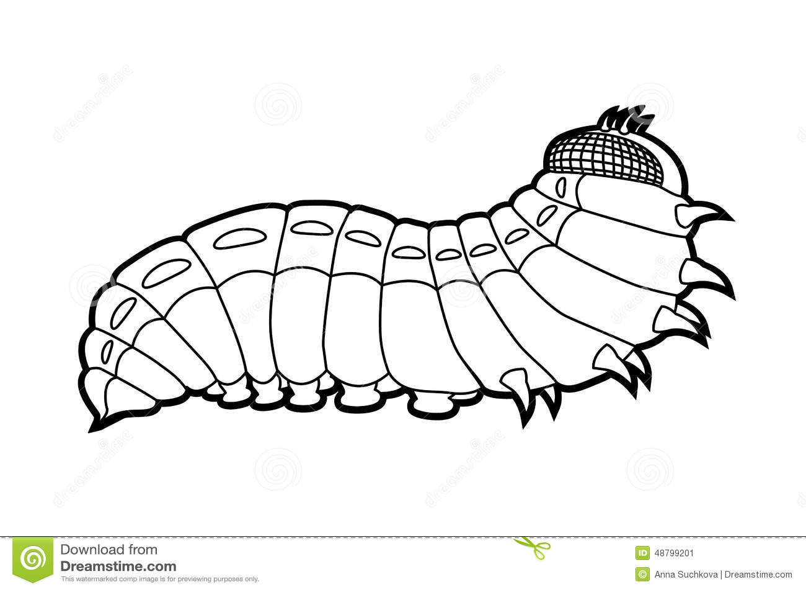 Caterpillar Butterfly Stock Vector Illustration Of Green