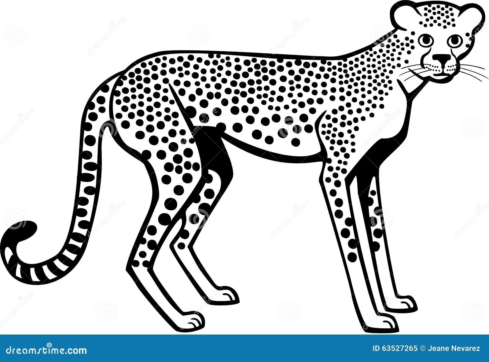 Cheetah Stock Vector