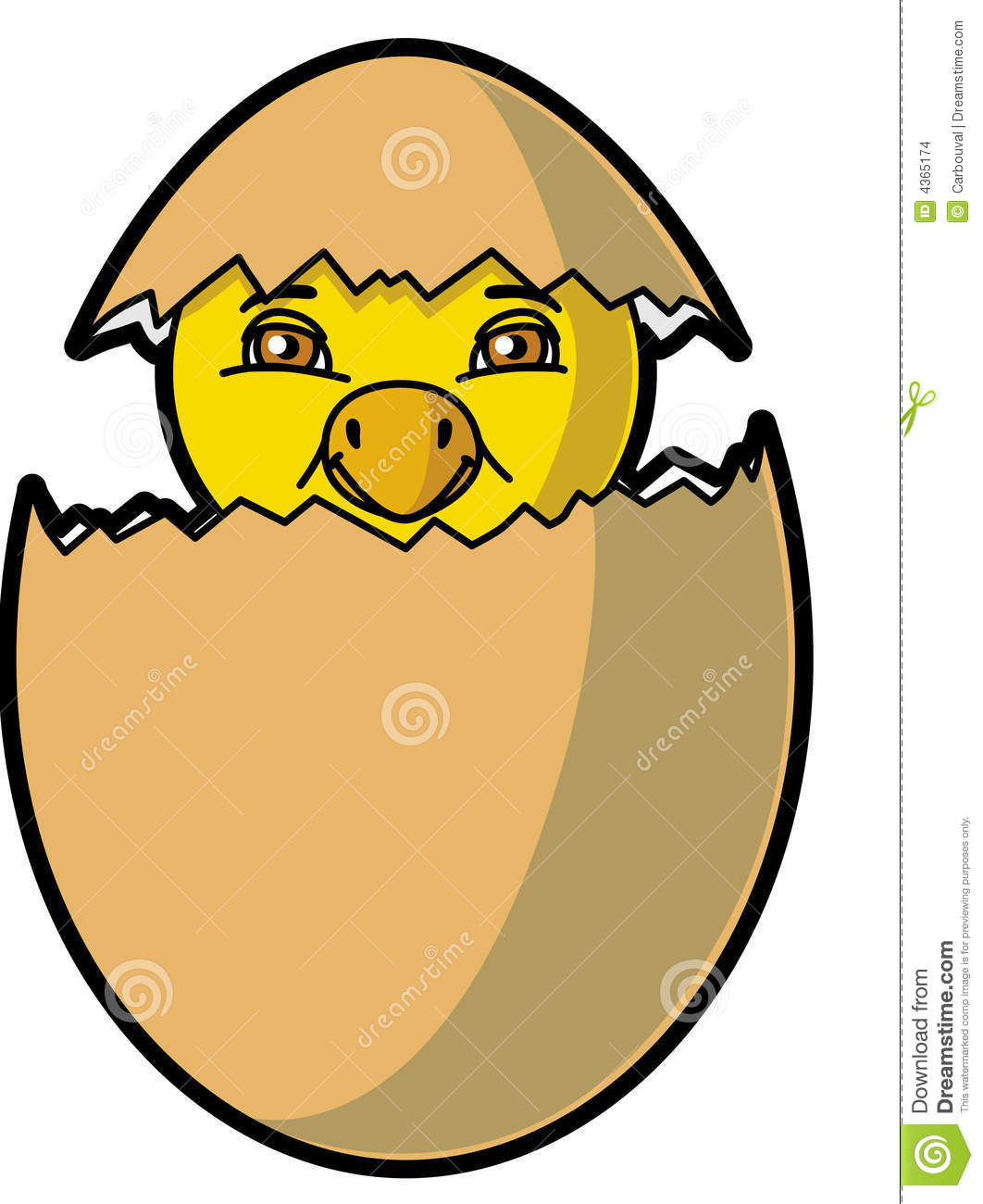 Chick Coming Out Of The Egg Stock Vector
