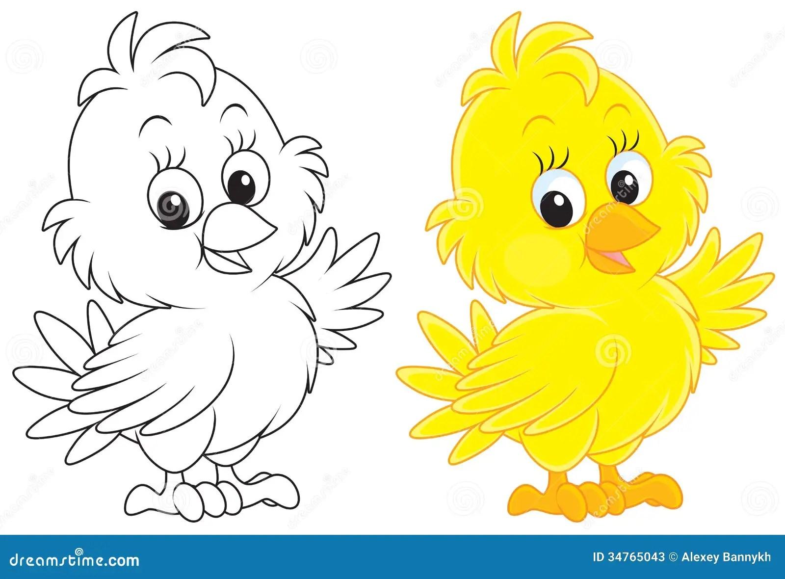 Chick Stock Illustration Illustration Of Little Coloring