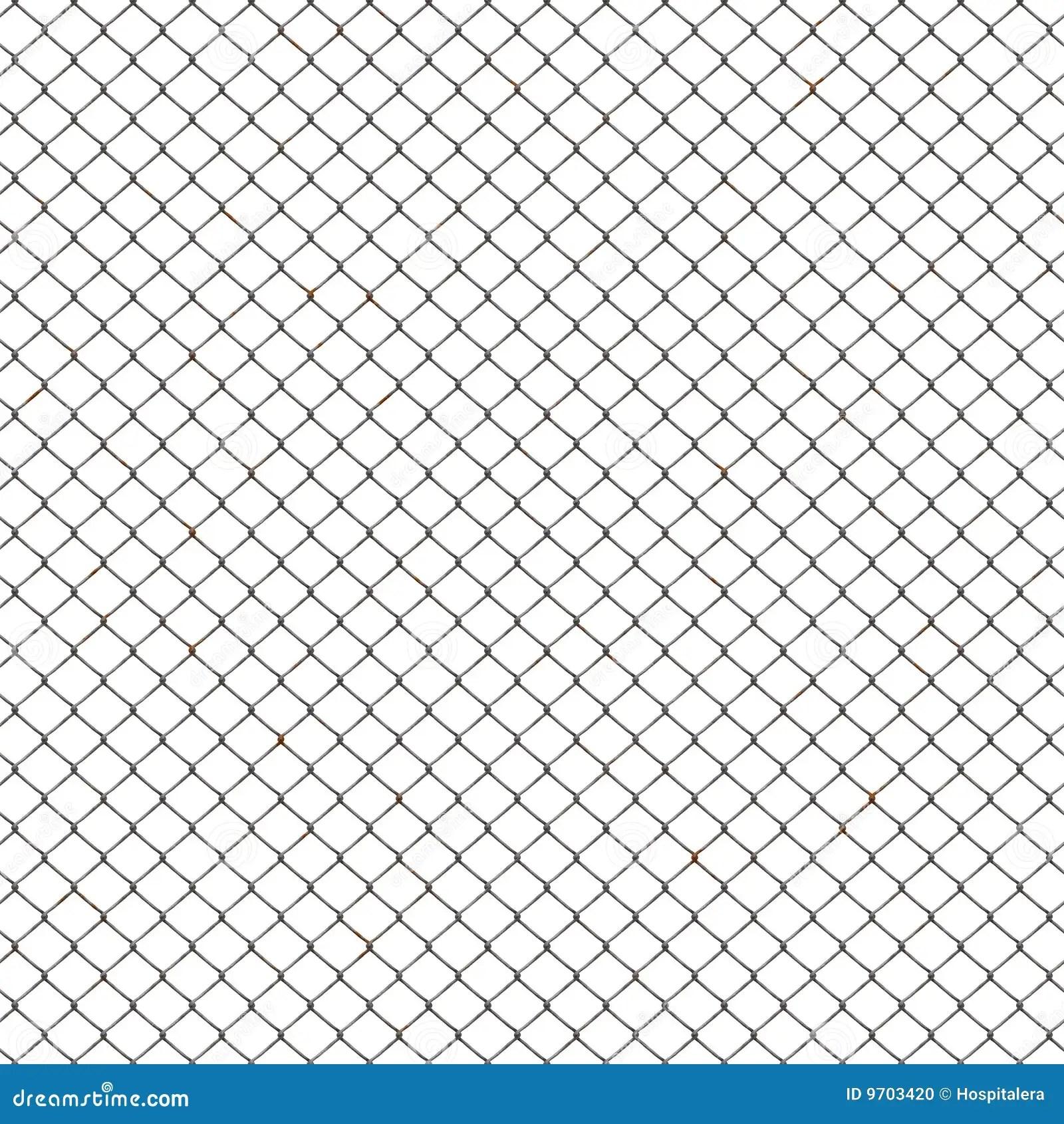 Chicken Mesh Stock Illustration Illustration Of Isolation